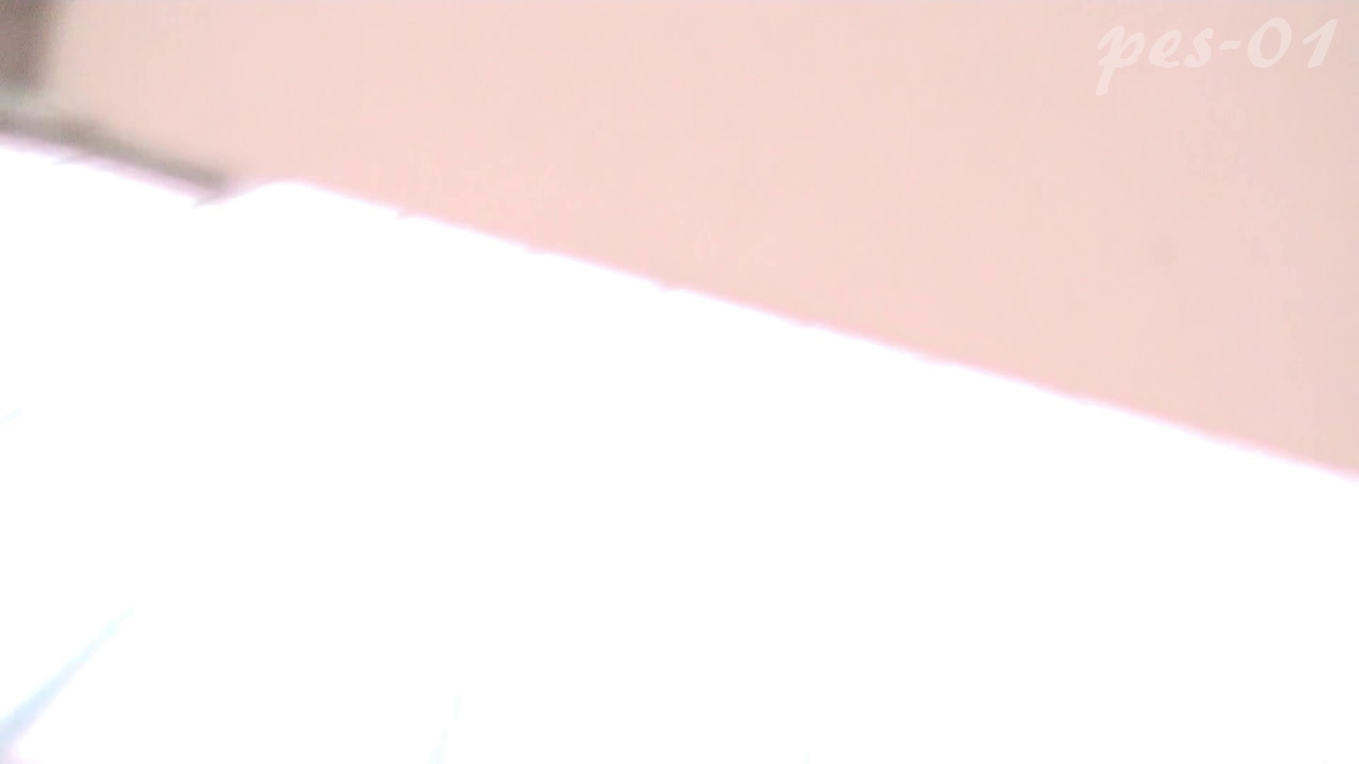 ※100個限定販売 至高下半身盗撮-プレミアム-【体育館編】VOL.1 ギャル達 | 洗面所のぞき  93枚 85