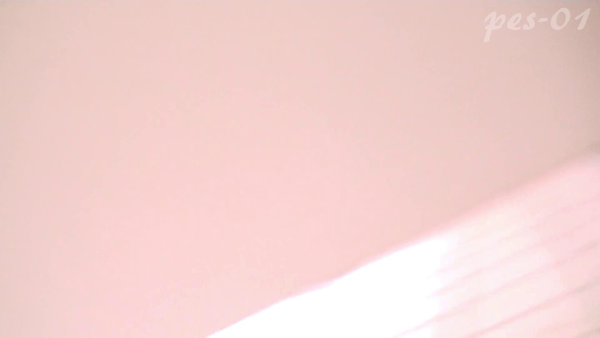 ※100個限定販売 至高下半身盗撮-プレミアム-【体育館編】VOL.1 ギャル達 | 洗面所のぞき  93枚 89