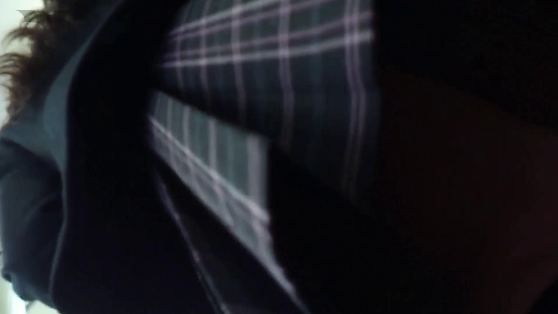 盗撮列車 Vol.14 お嬢様のバックプリントパンツ 盗撮編 セックス無修正動画無料 99枚 82