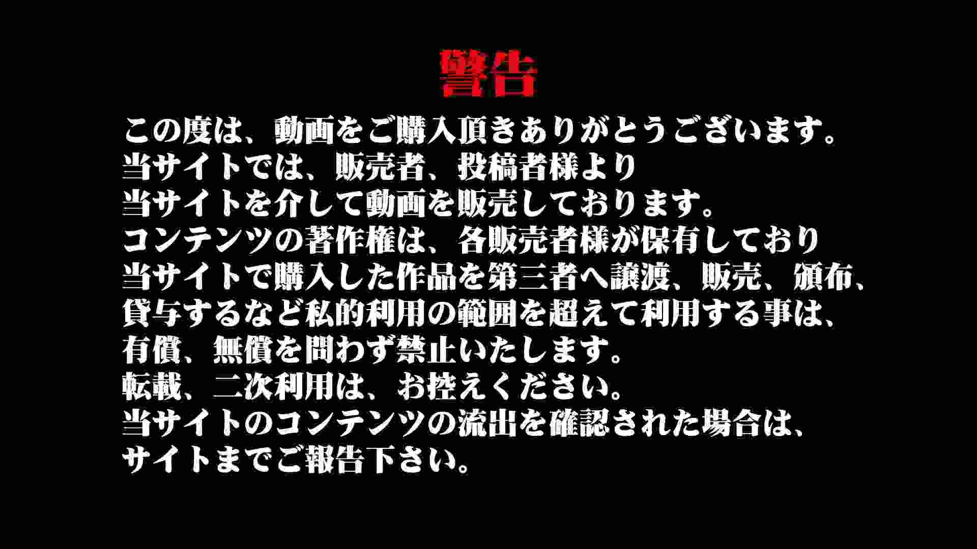 盗撮列車 Vol.53 ギャル達 おまんこ動画流出 79枚 2