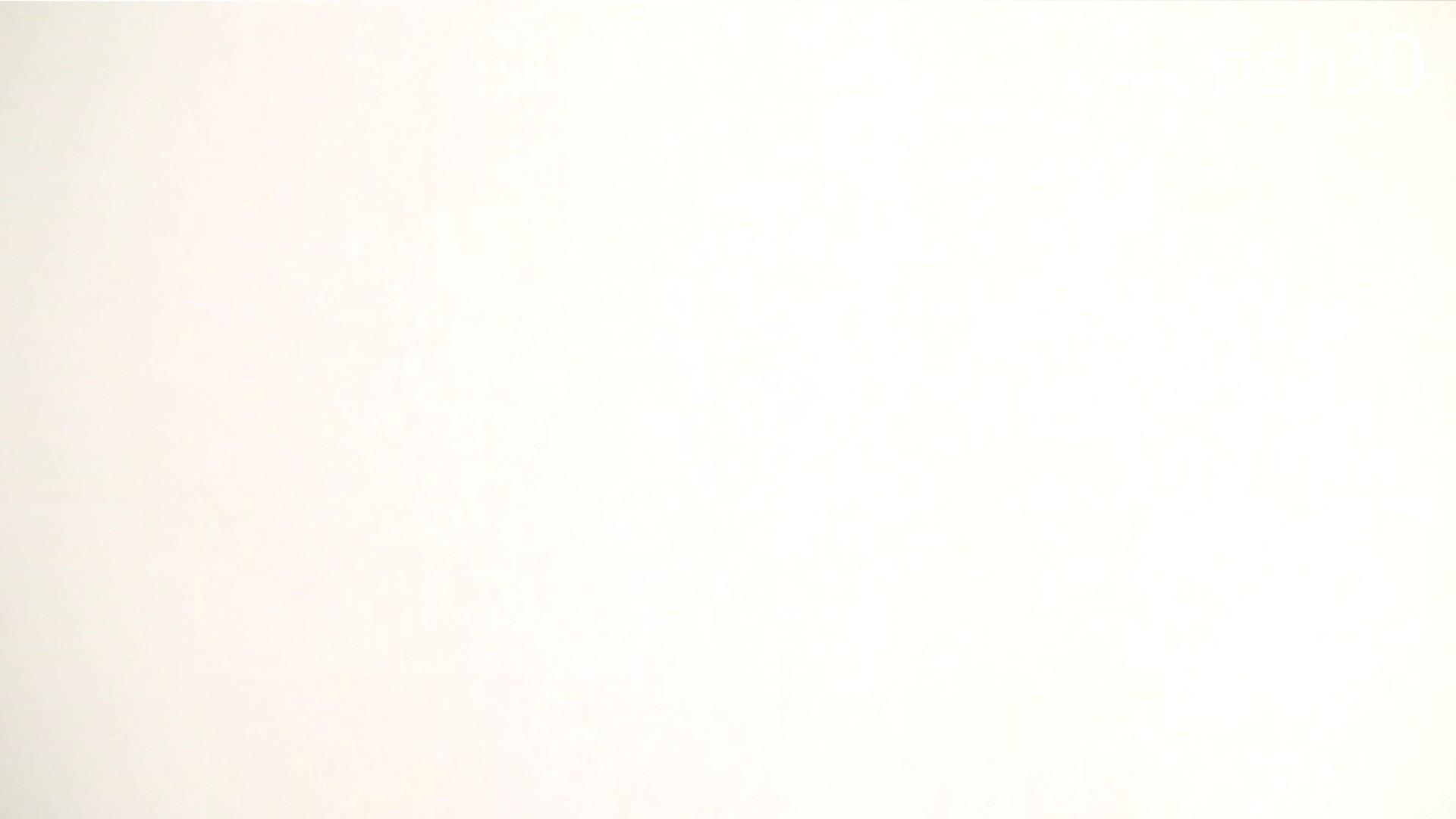 ▲復活限定▲ハイビジョン 盗神伝 Vol.30 お姉さんのSEX ぱこり動画紹介 99枚 73