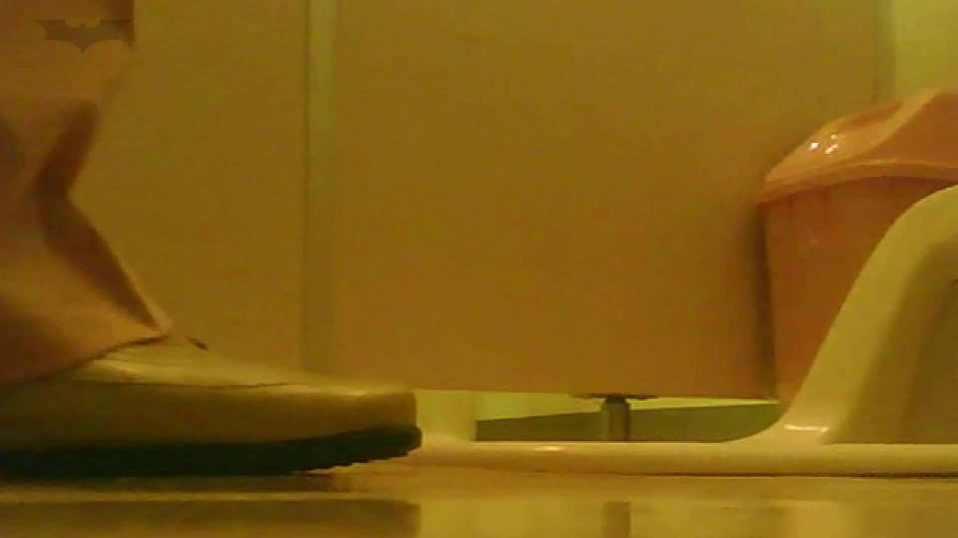 夏の思い出浜辺トイレ盗撮Vol.18 潜入 ぱこり動画紹介 98枚 33