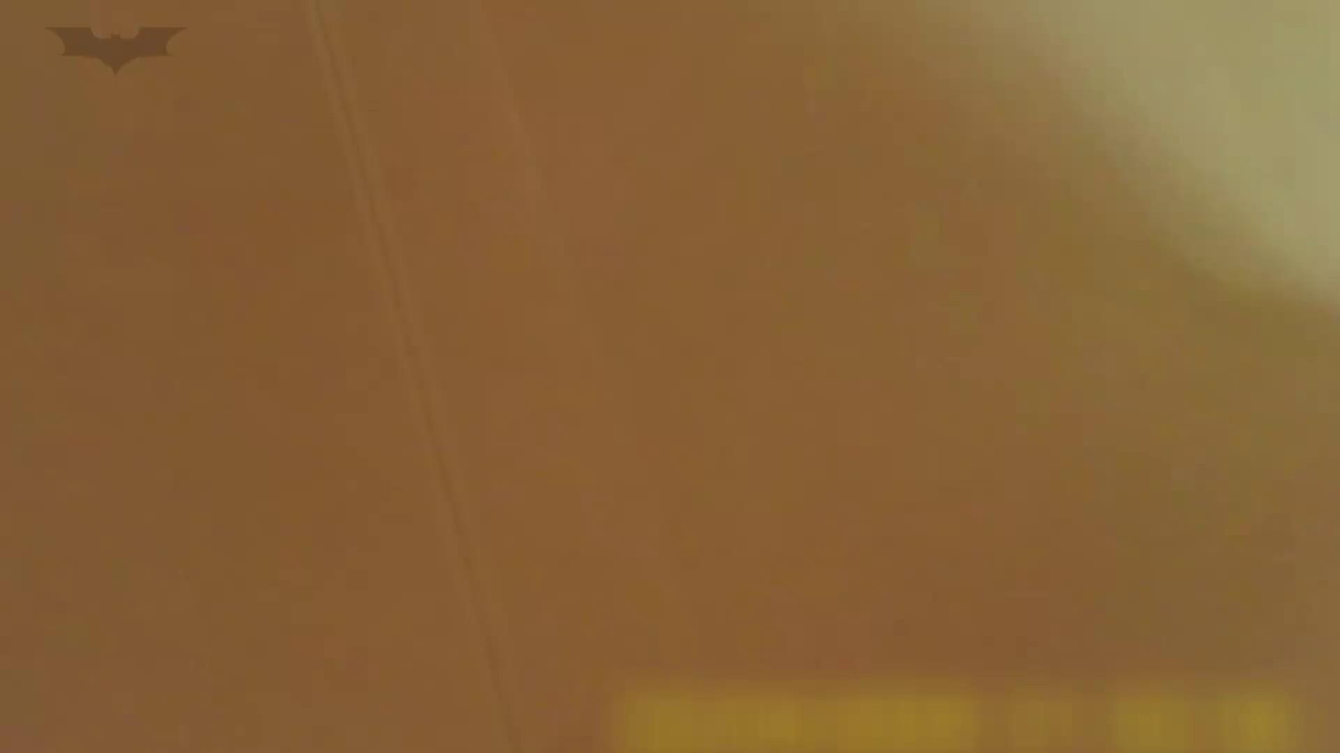 夏の思い出浜辺トイレ盗撮Vol.18 お姉さんのSEX オマンコ動画キャプチャ 98枚 65