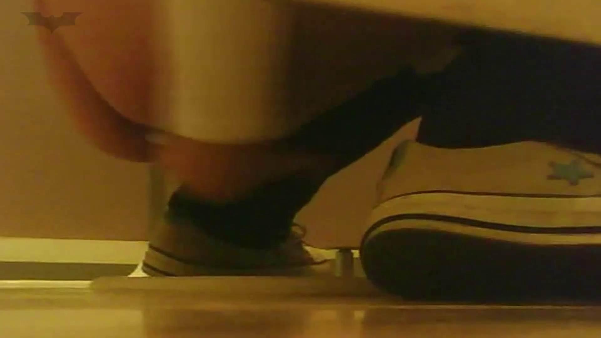 夏の思い出浜辺トイレ盗撮Vol.18 お姉さんのSEX オマンコ動画キャプチャ 98枚 77