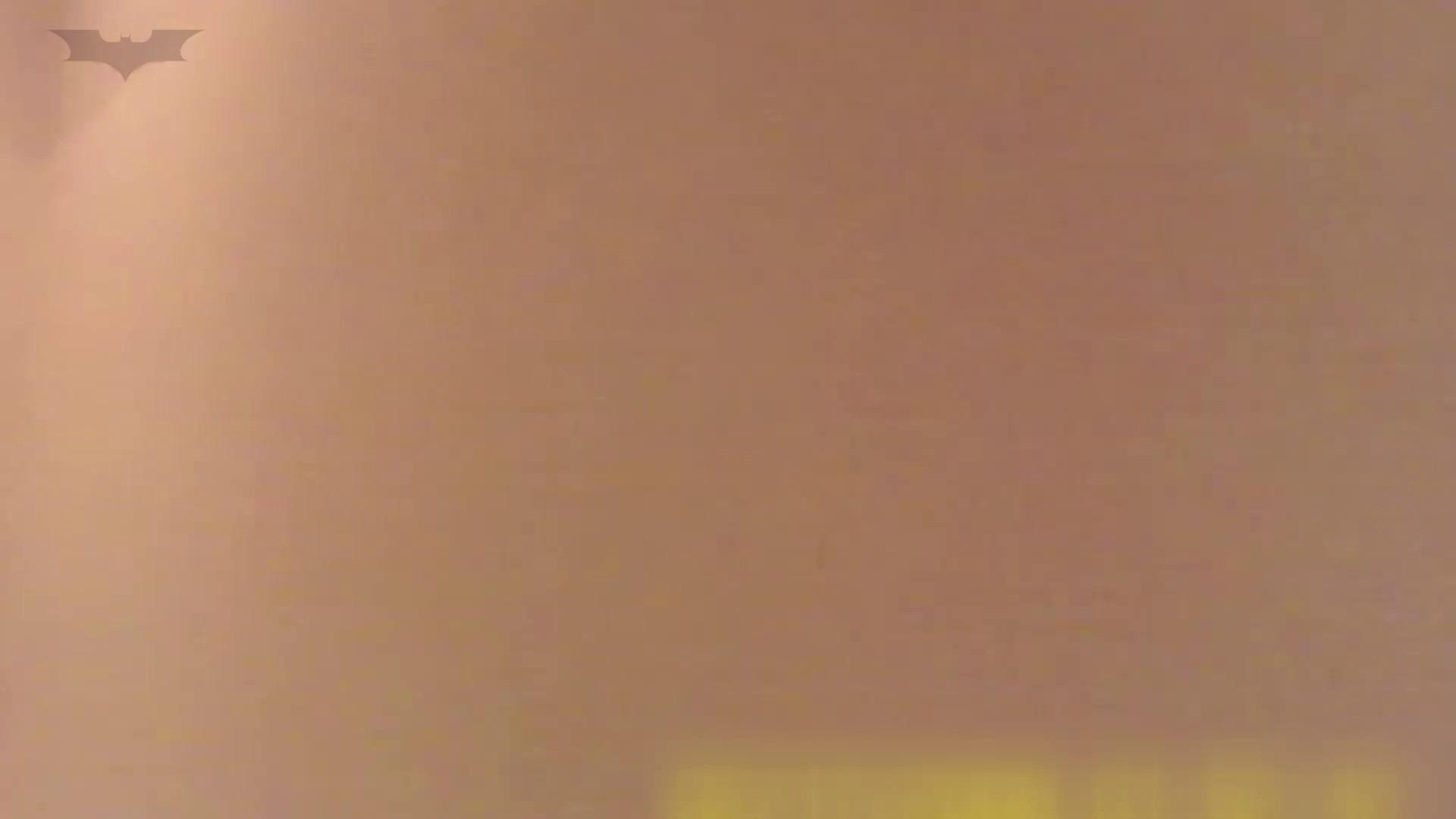 夏の思い出浜辺トイレ盗撮Vol.19 ギャル達 AV無料動画キャプチャ 110枚 24