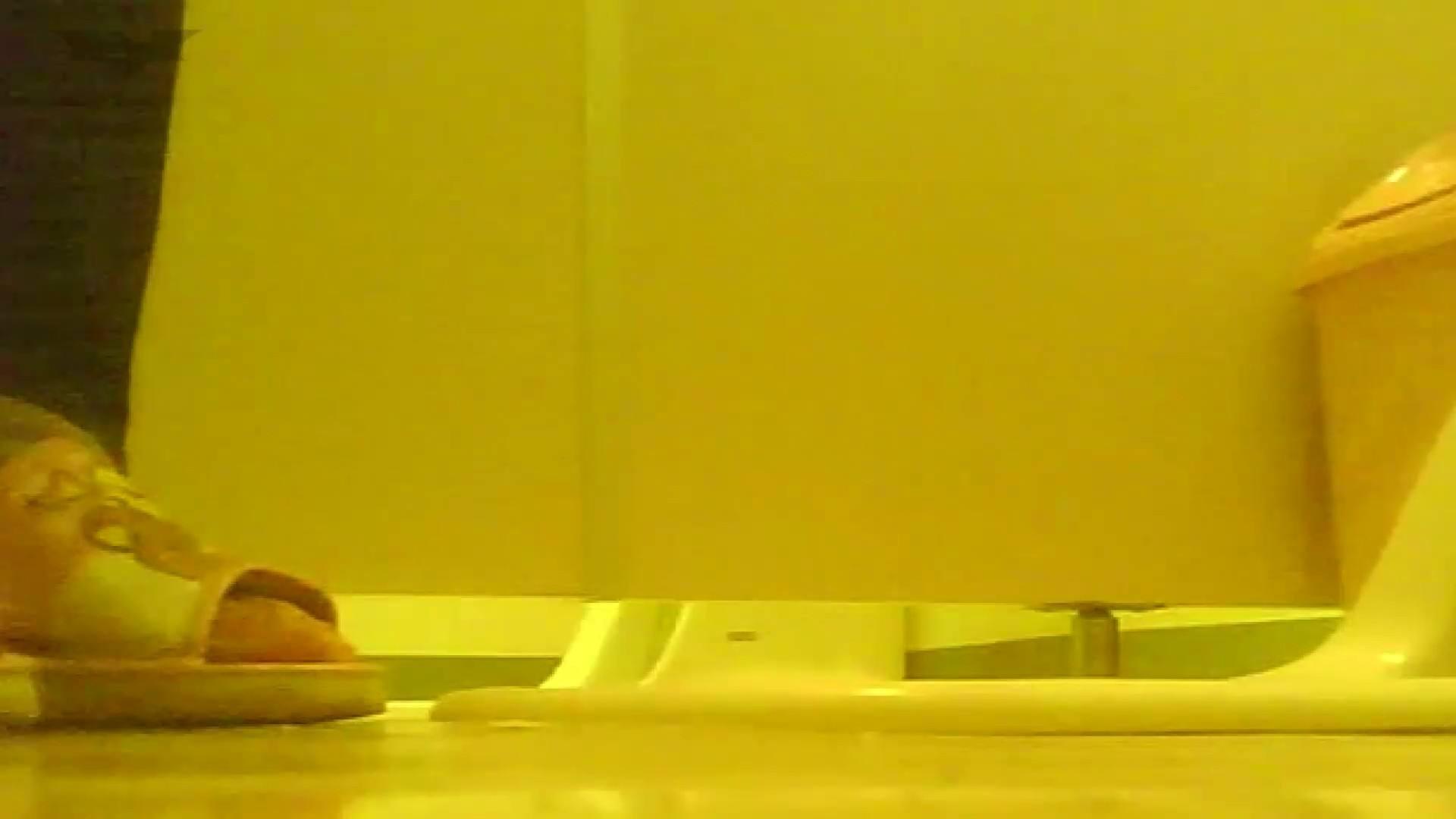 夏の思い出浜辺トイレ盗撮Vol.19 トイレ盗撮 セックス画像 110枚 53