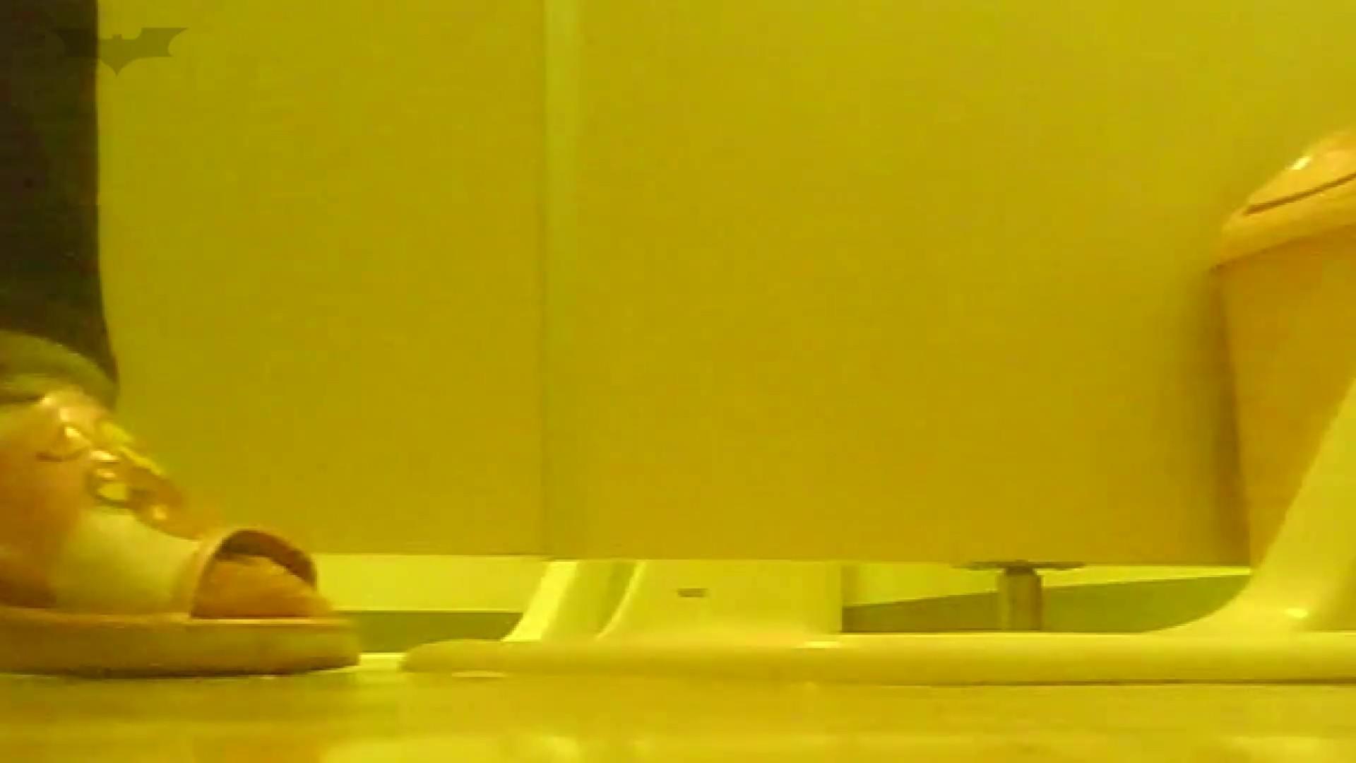 夏の思い出浜辺トイレ盗撮Vol.19 和式便所 われめAV動画紹介 110枚 54