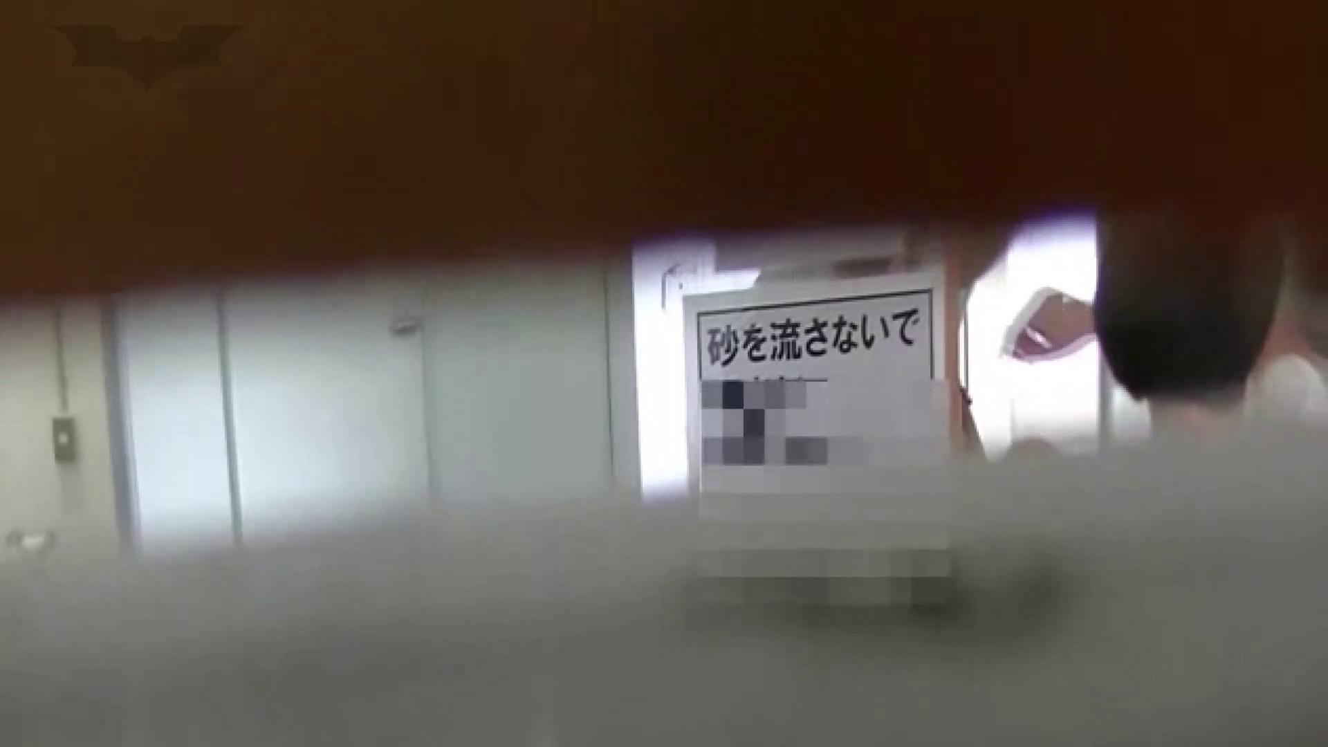 夏の思い出浜辺トイレ盗撮Vol.24 トイレ盗撮 性交動画流出 97枚 23