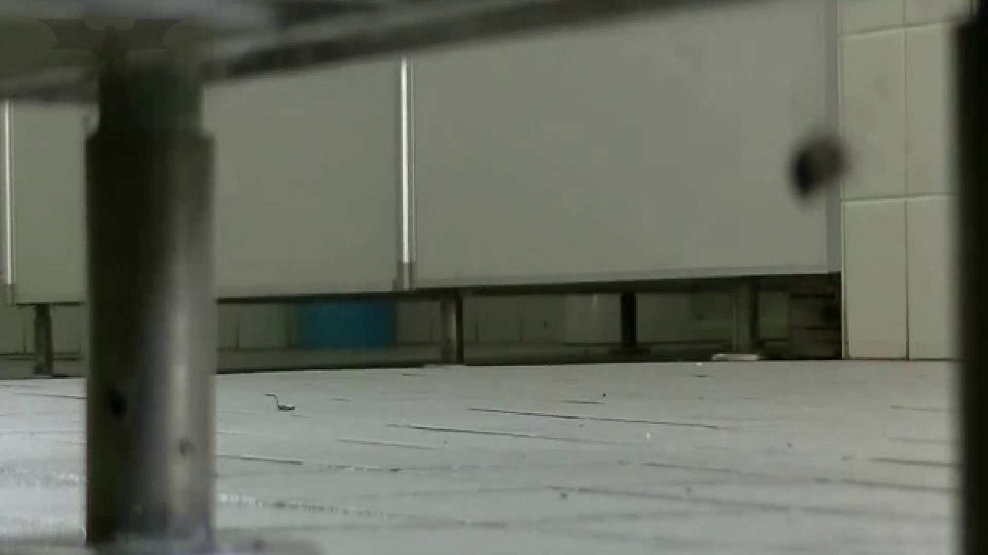 夏の思い出浜辺トイレ盗撮Vol.24 トイレ盗撮 性交動画流出 97枚 71