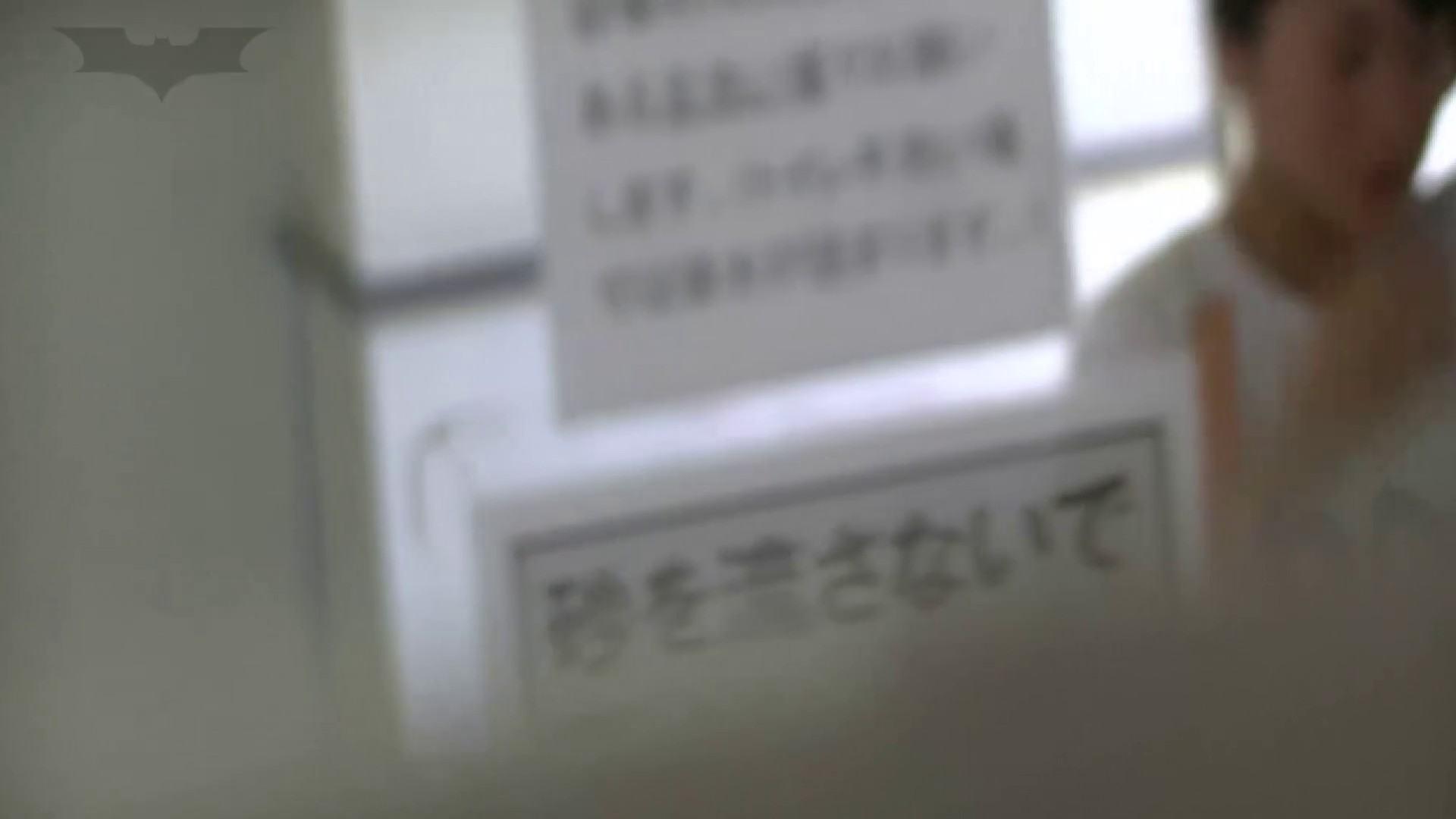 夏の思い出浜辺トイレ盗撮Vol.26 高評価 | 盗撮編  76枚 61