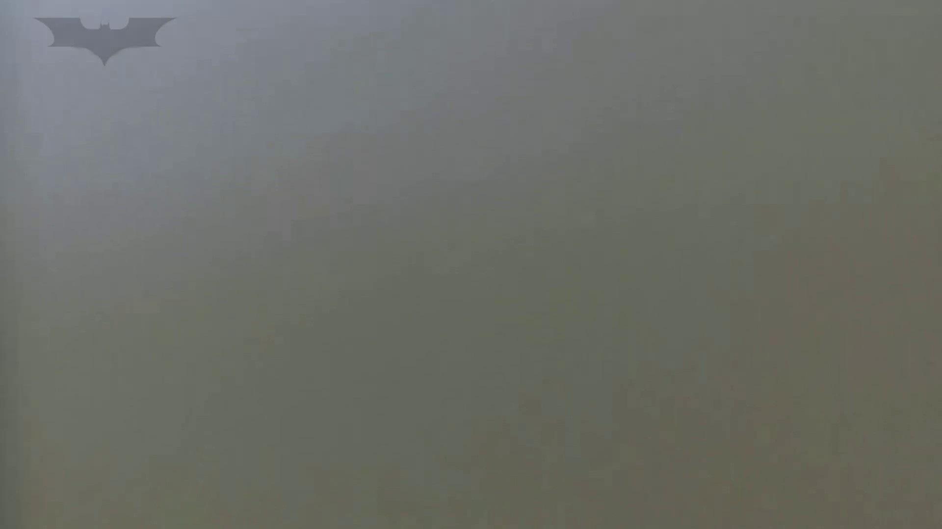 夏の思い出浜辺トイレ盗撮Vol.28 美肌 オメコ動画キャプチャ 89枚 46