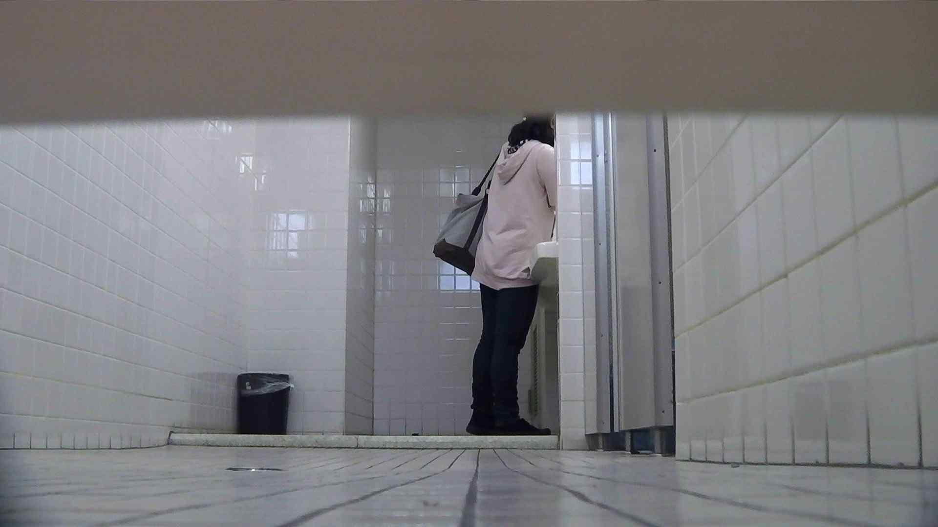お銀さんの「洗面所突入レポート!!」Nol.2 盛合せ 濡れ場動画紹介 94枚 64