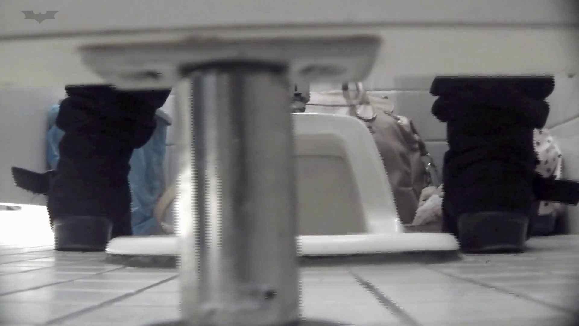 お銀さんの「洗面所突入レポート!!」Nol.6 お姉さんのSEX 濡れ場動画紹介 100枚 69