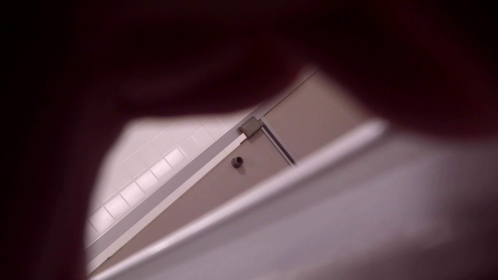お銀さんの「洗面所突入レポート!!」Nol.14 洗面所のぞき 性交動画流出 76枚 10