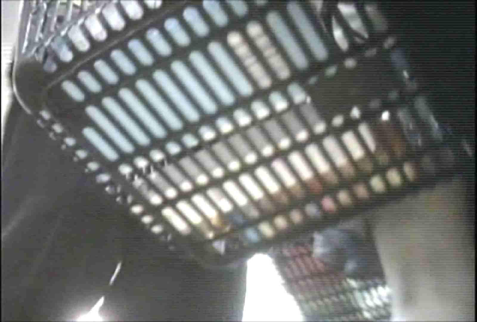「しん」さんの逆さバイキングVol.13 チラ見  106枚 100