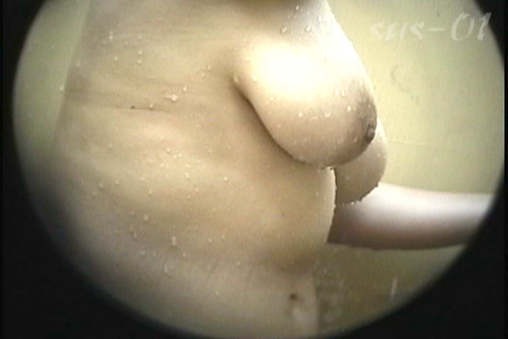 No.2 タレパイちゃんと美乳チャン。乳首の接写が中心。 丸見え えろ無修正画像 98枚 47
