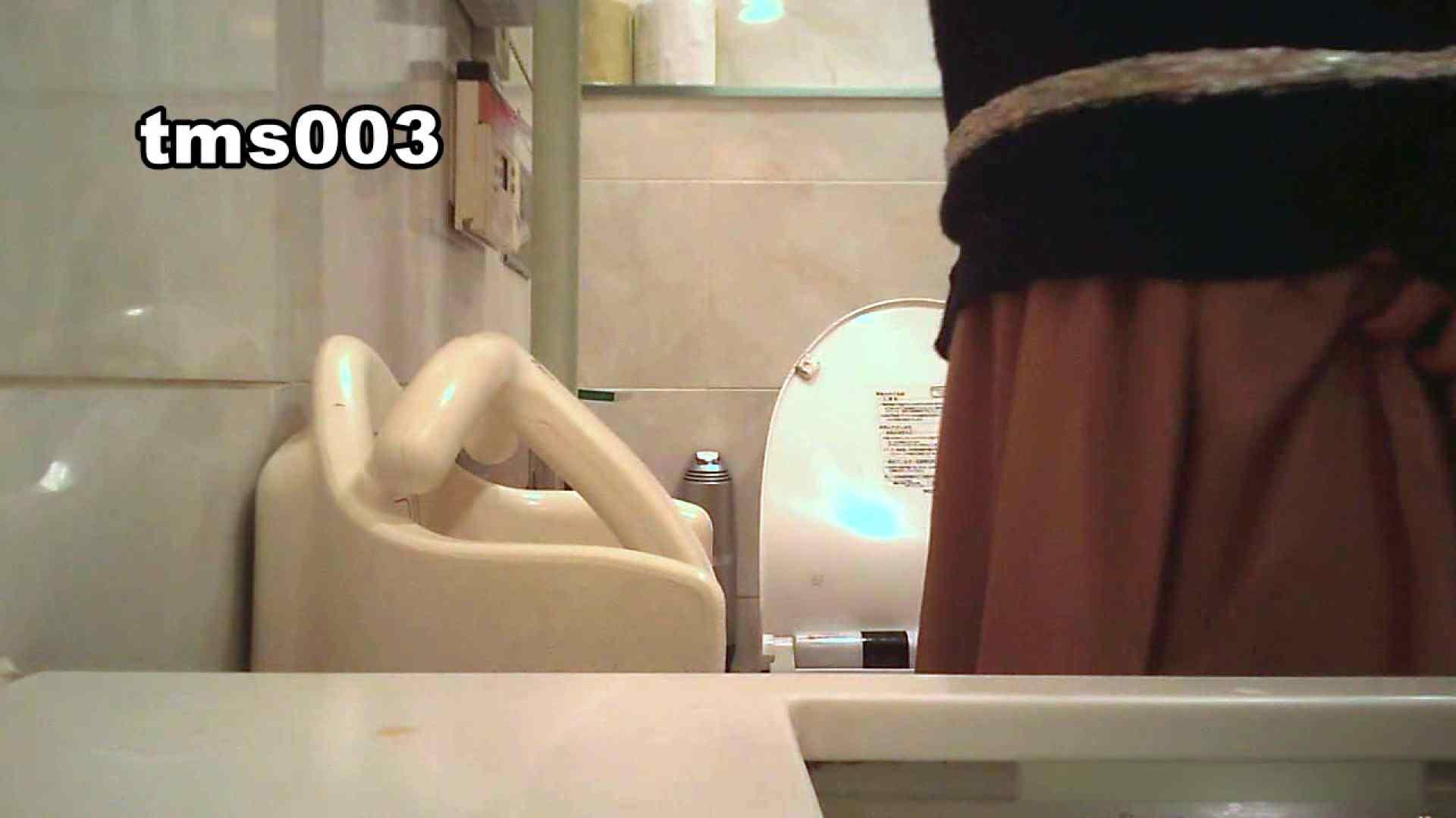 トイメンの割れ目 vol.003 洗面所のぞき SEX無修正画像 104枚 104