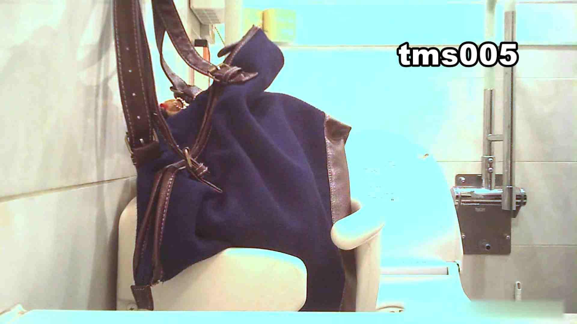 トイメンの割れ目 vol.005 洗面所のぞき ぱこり動画紹介 84枚 24