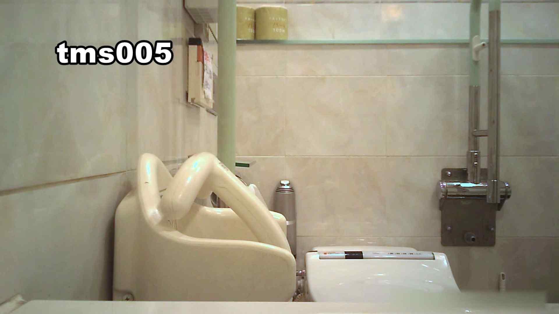 トイメンの割れ目 vol.005 洗面所のぞき ぱこり動画紹介 84枚 79