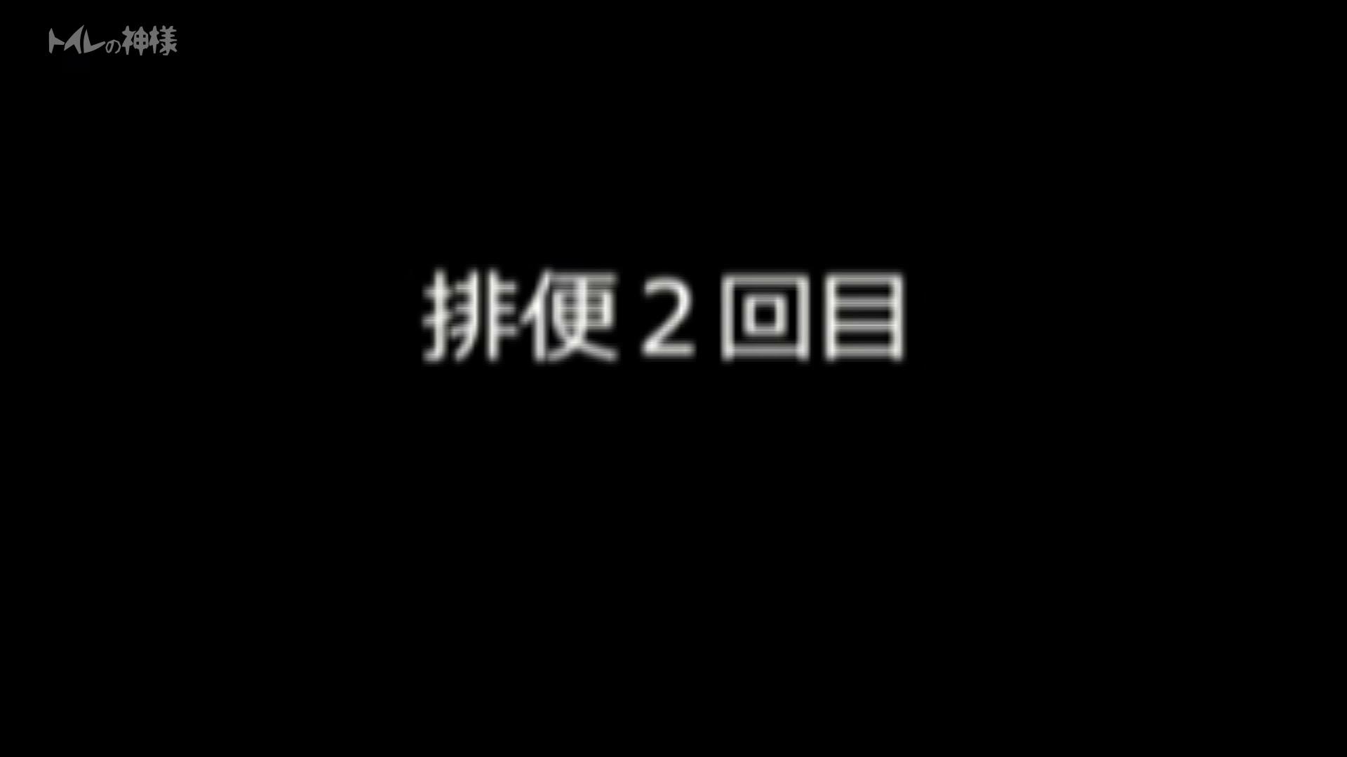 トイレの神様 Vol.03 彼女のうんち隠し撮り 丸見え セックス無修正動画無料 111枚 97