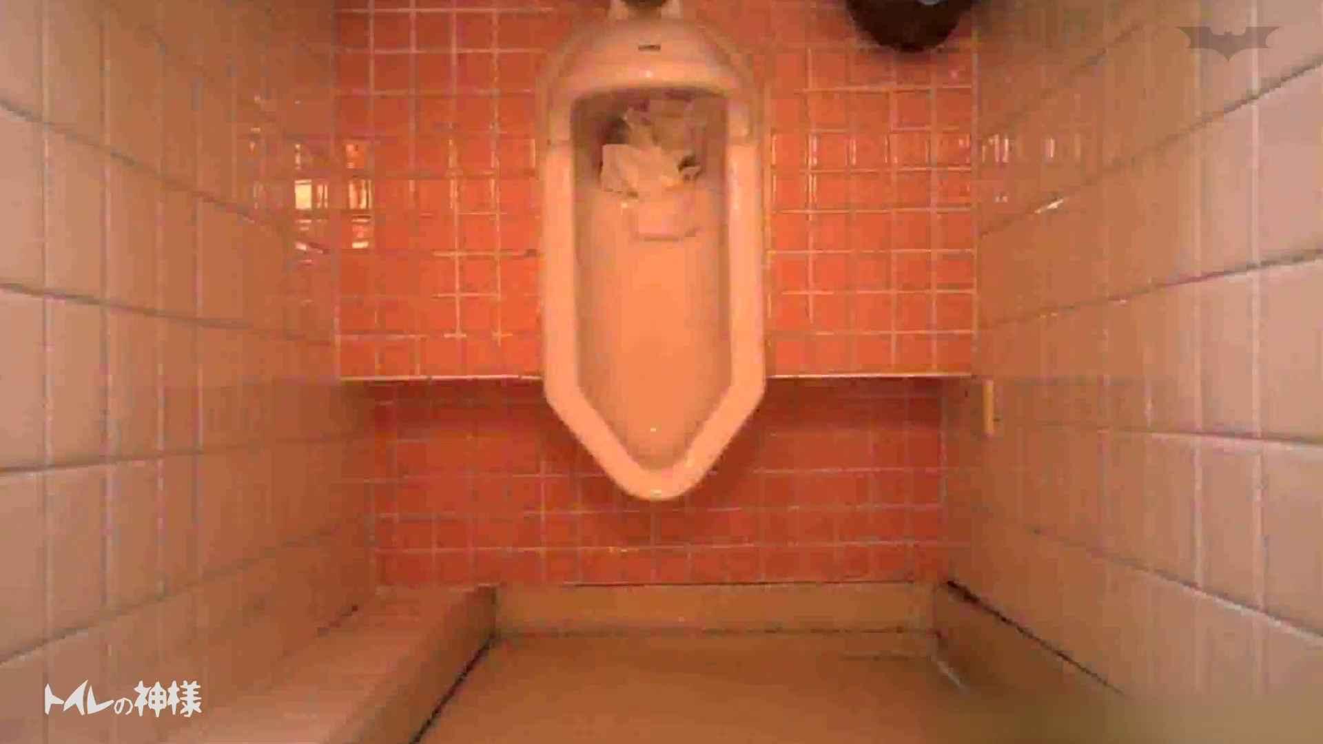 トイレの神様 Vol.10 お姉さんのSEX | 丸見え  75枚 19