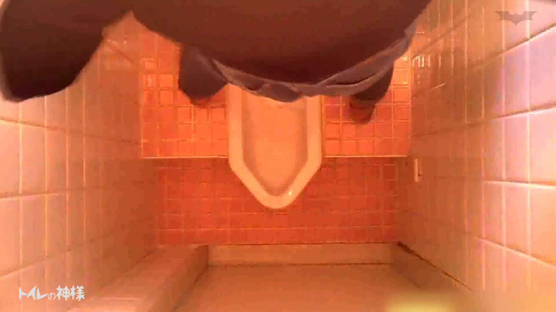トイレの神様 Vol.10 お姉さんのSEX  75枚 63