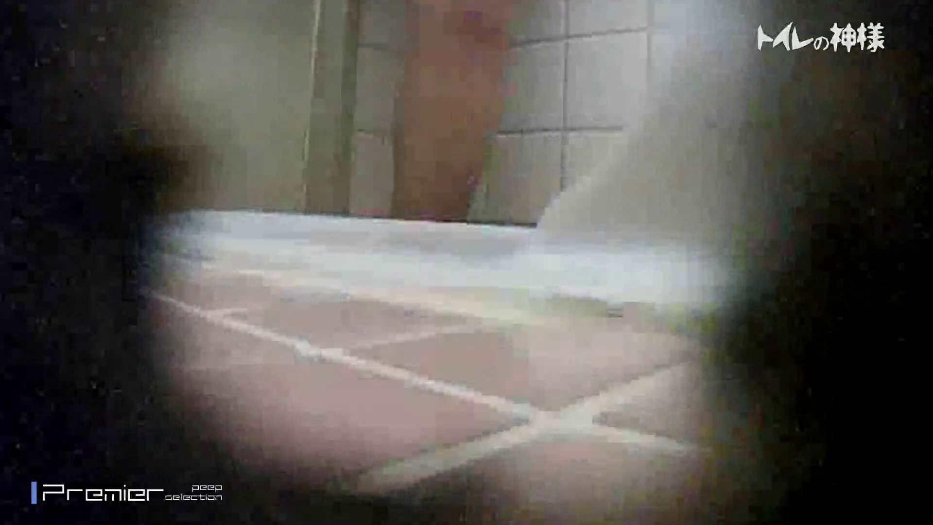 kyouko排泄 うんこをたくさん集めました。トイレの神様 Vol.14 トイレ盗撮 ぱこり動画紹介 92枚 68