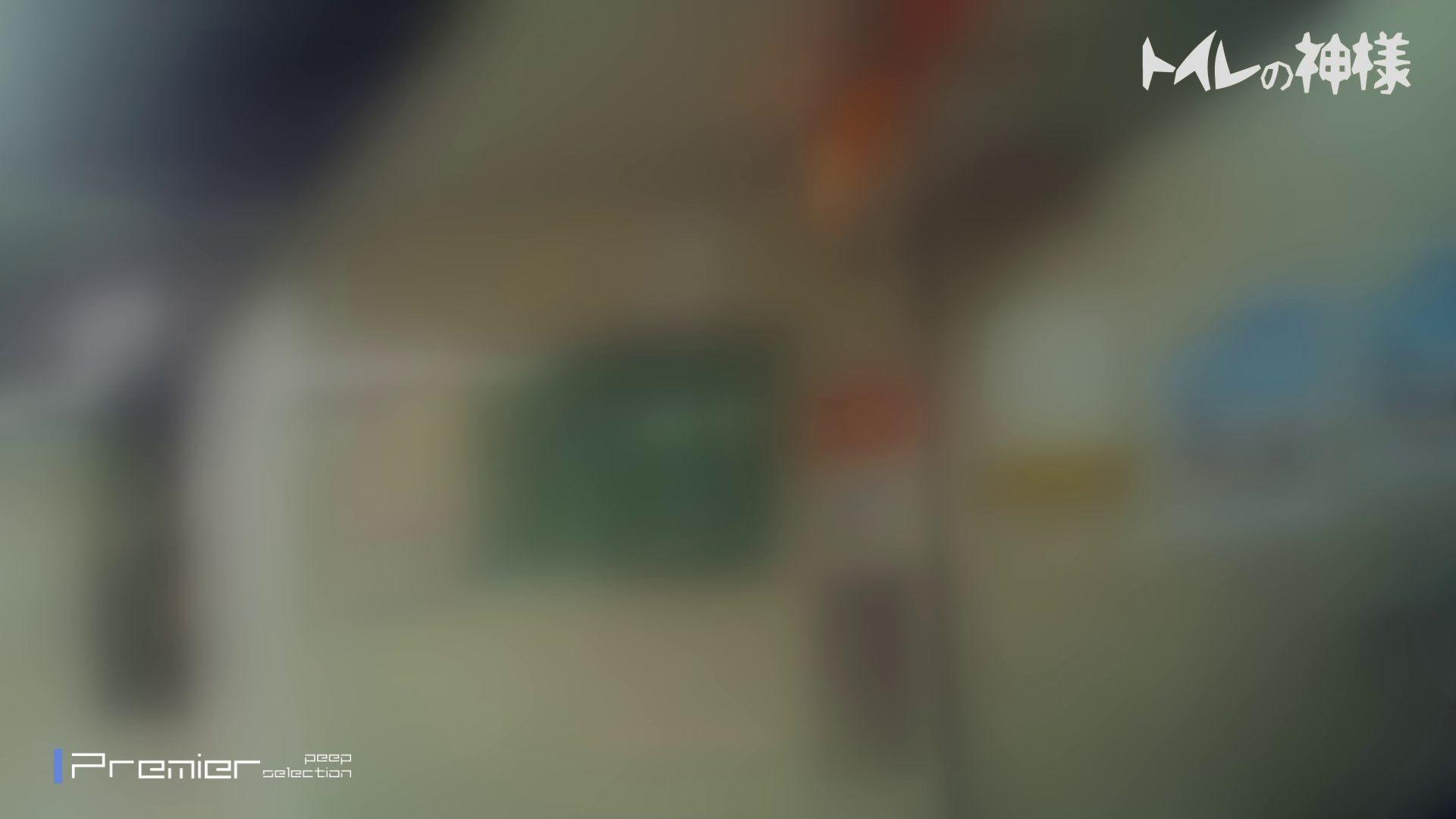 2視点パンツ逆さ取りVol.02 トイレ盗撮 ワレメ無修正動画無料 102枚 51