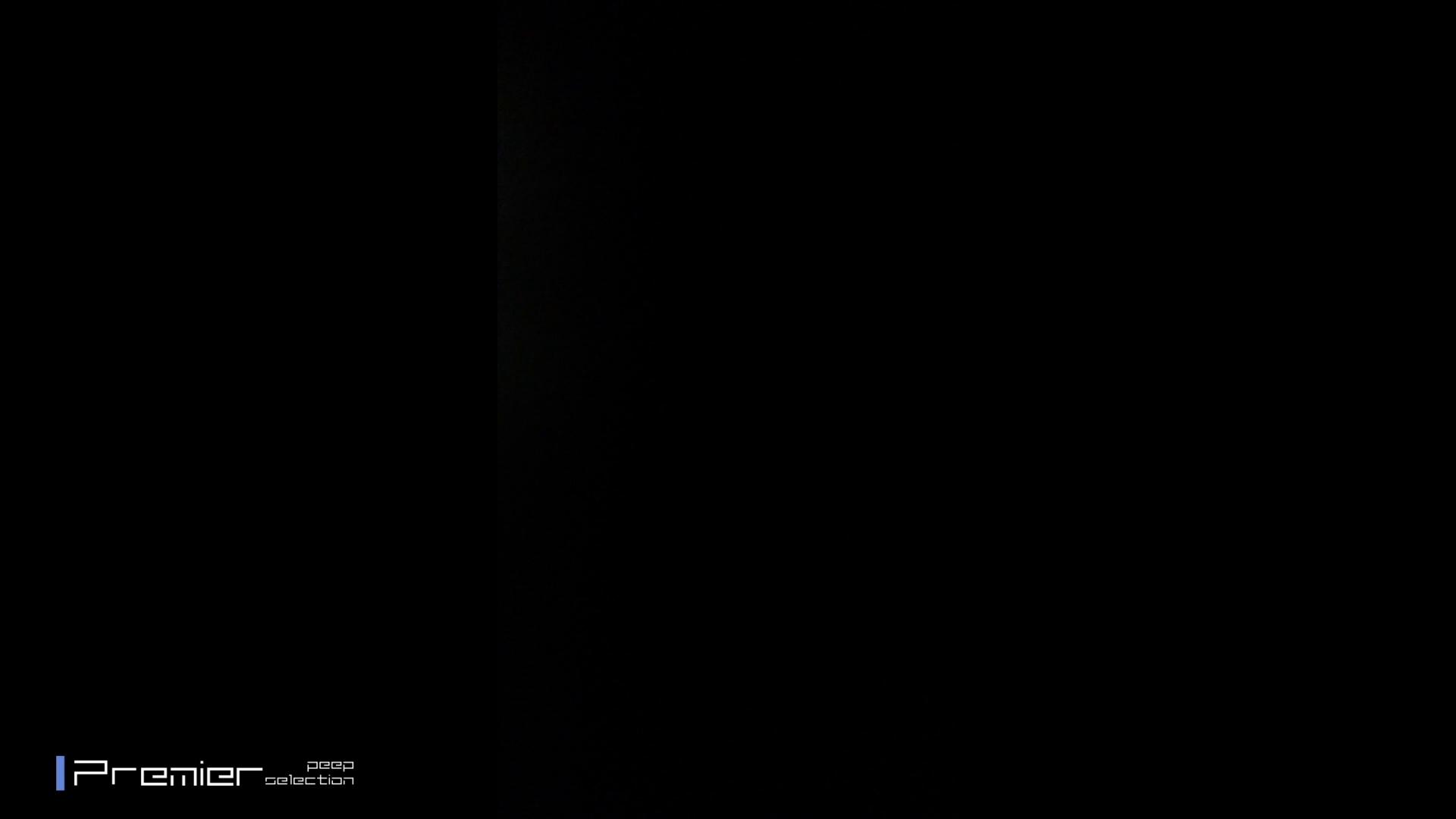 吉祥寺の美容師 エロい休日 美女達の私生活に潜入! お姉さんのSEX スケベ動画紹介 92枚 82