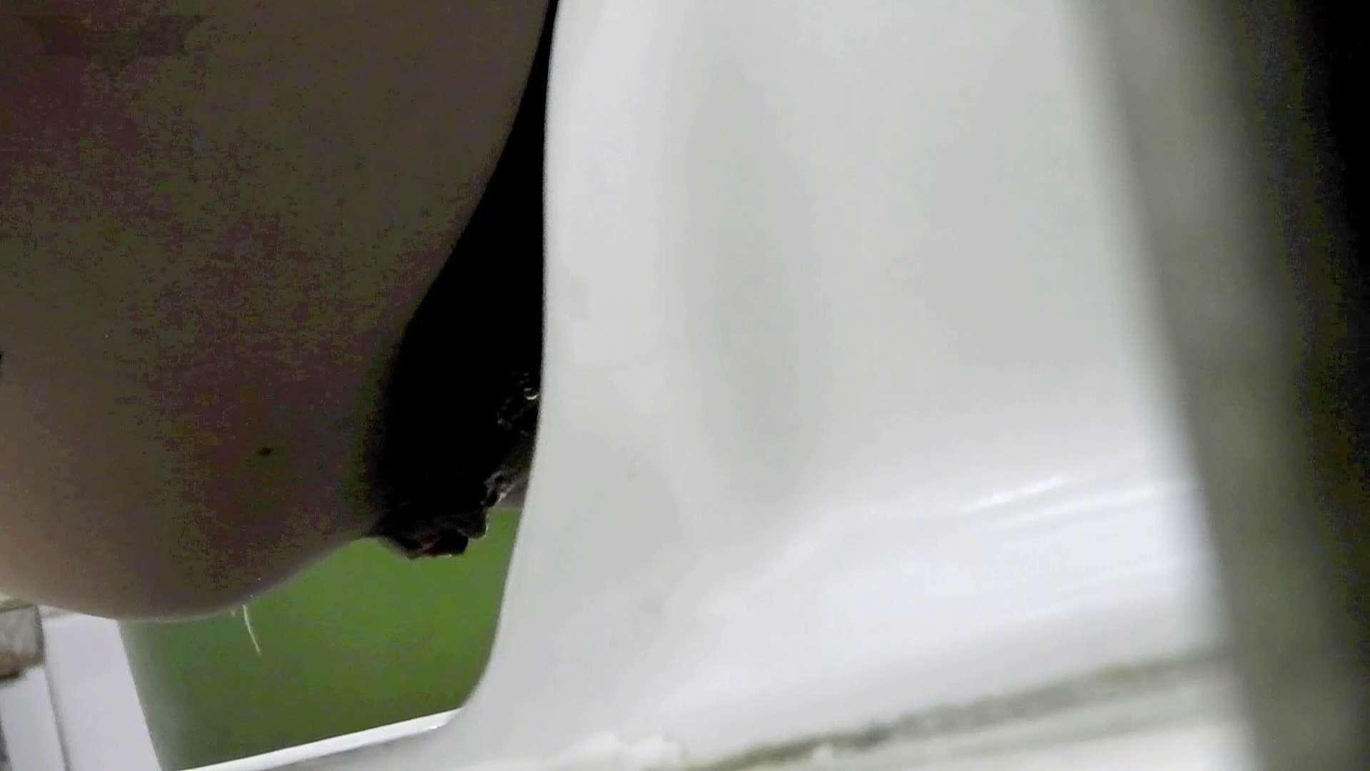 洗面所特攻隊 vol.73 ラスト3澄ました顔して、まさかの脱肛!! 高画質 ぱこり動画紹介 78枚 53
