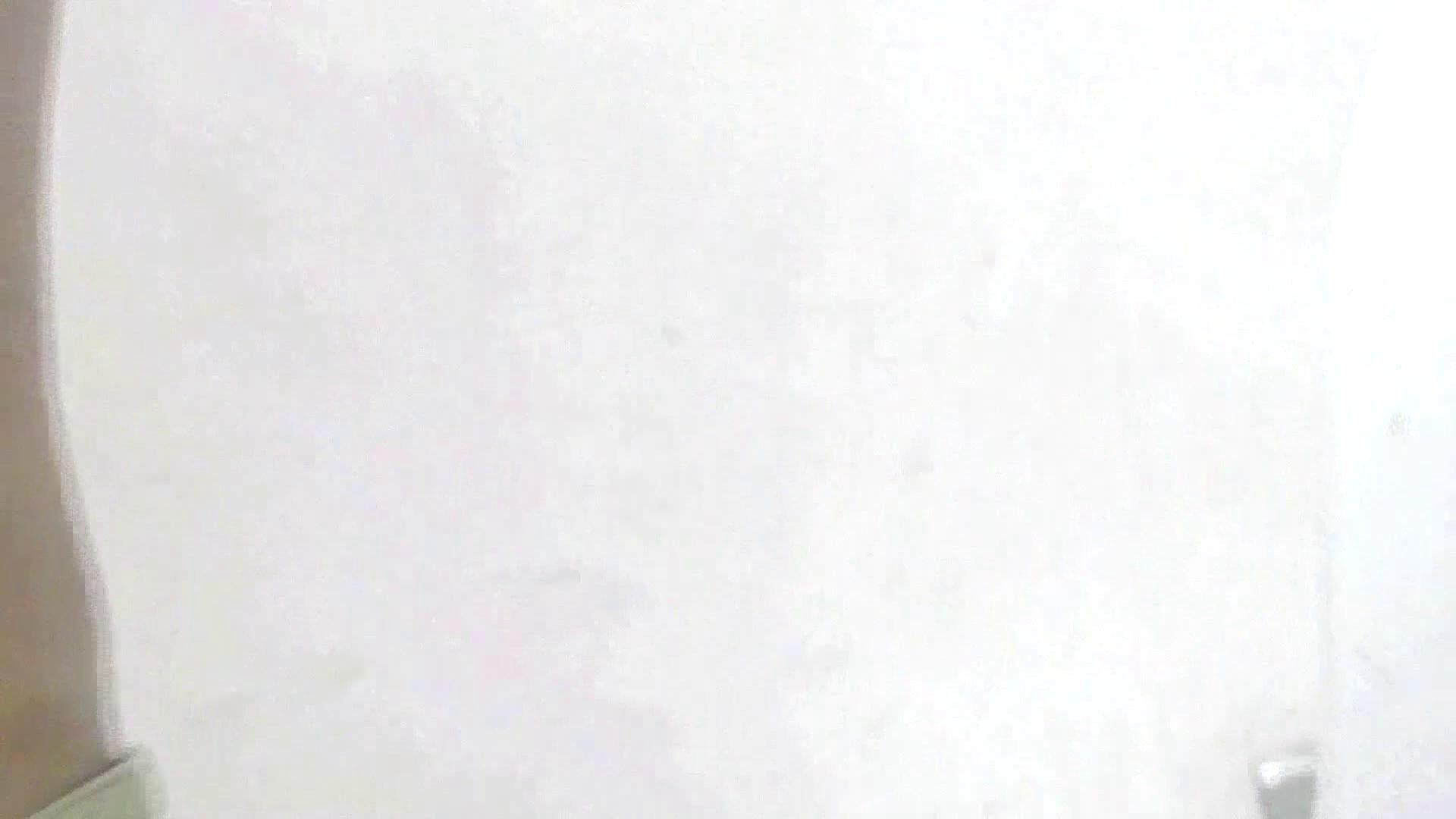 洗面所特攻隊 vol.X さらば!!特攻隊。【2015・08位】 洗面所のぞき | 丸見え  95枚 7
