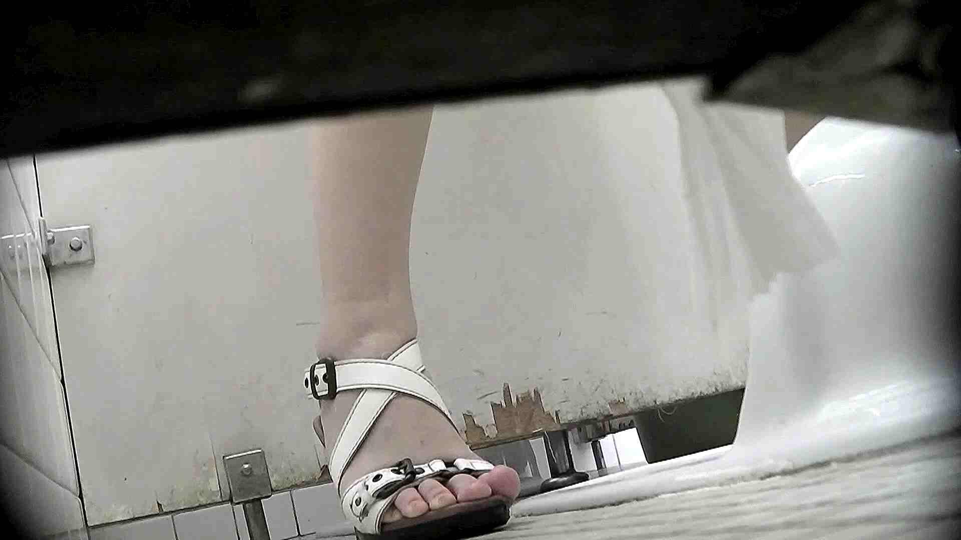 洗面所特攻隊 vol.X さらば!!特攻隊。【2015・08位】 高画質 ワレメ動画紹介 95枚 17