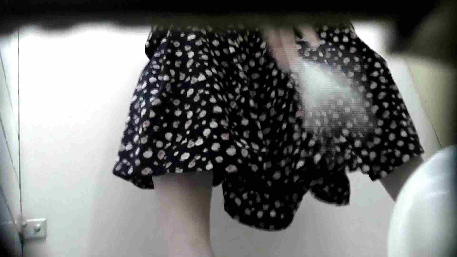 洗面所特攻隊 vol.X さらば!!特攻隊。【2015・08位】 高画質 ワレメ動画紹介 95枚 29