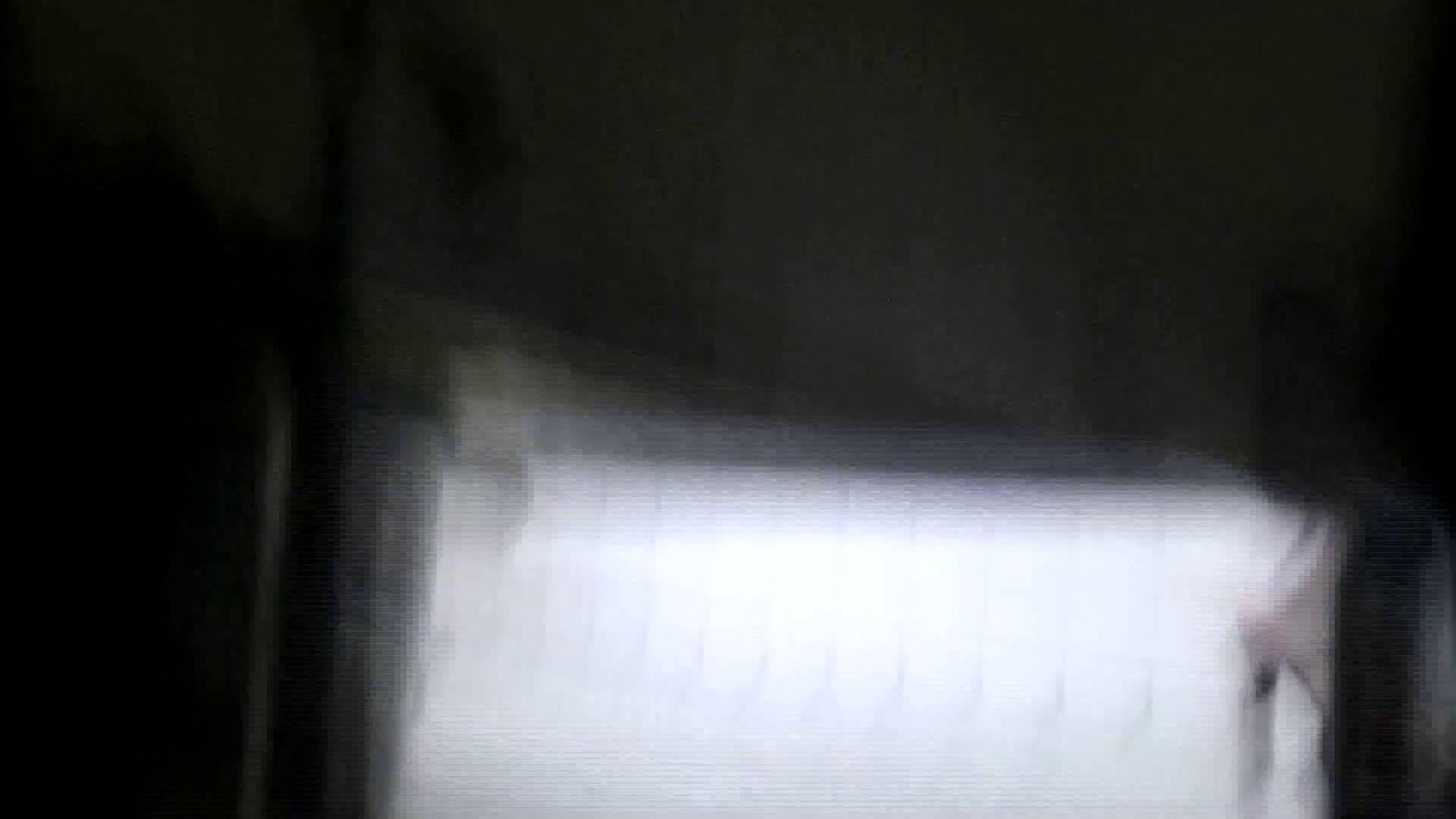 洗面所特攻隊 vol.X さらば!!特攻隊。【2015・08位】 ギャル達 スケベ動画紹介 95枚 32