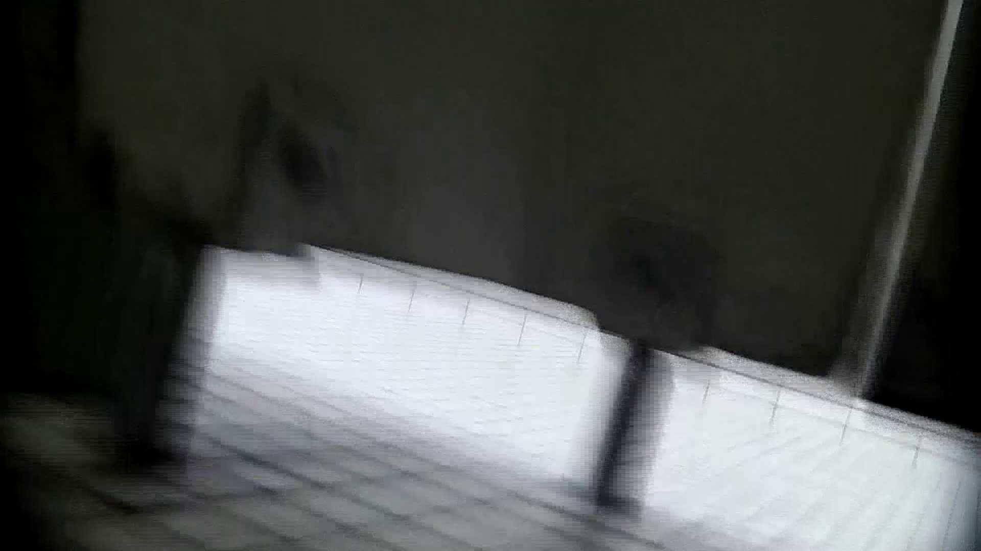 洗面所特攻隊 vol.X さらば!!特攻隊。【2015・08位】 洗面所のぞき  95枚 54