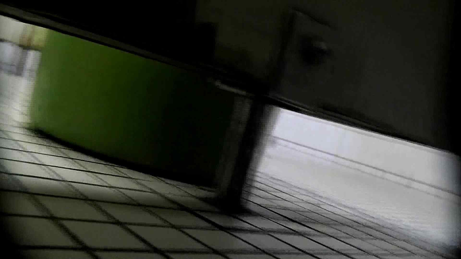 洗面所特攻隊 vol.X さらば!!特攻隊。【2015・08位】 洗面所のぞき | 丸見え  95枚 55