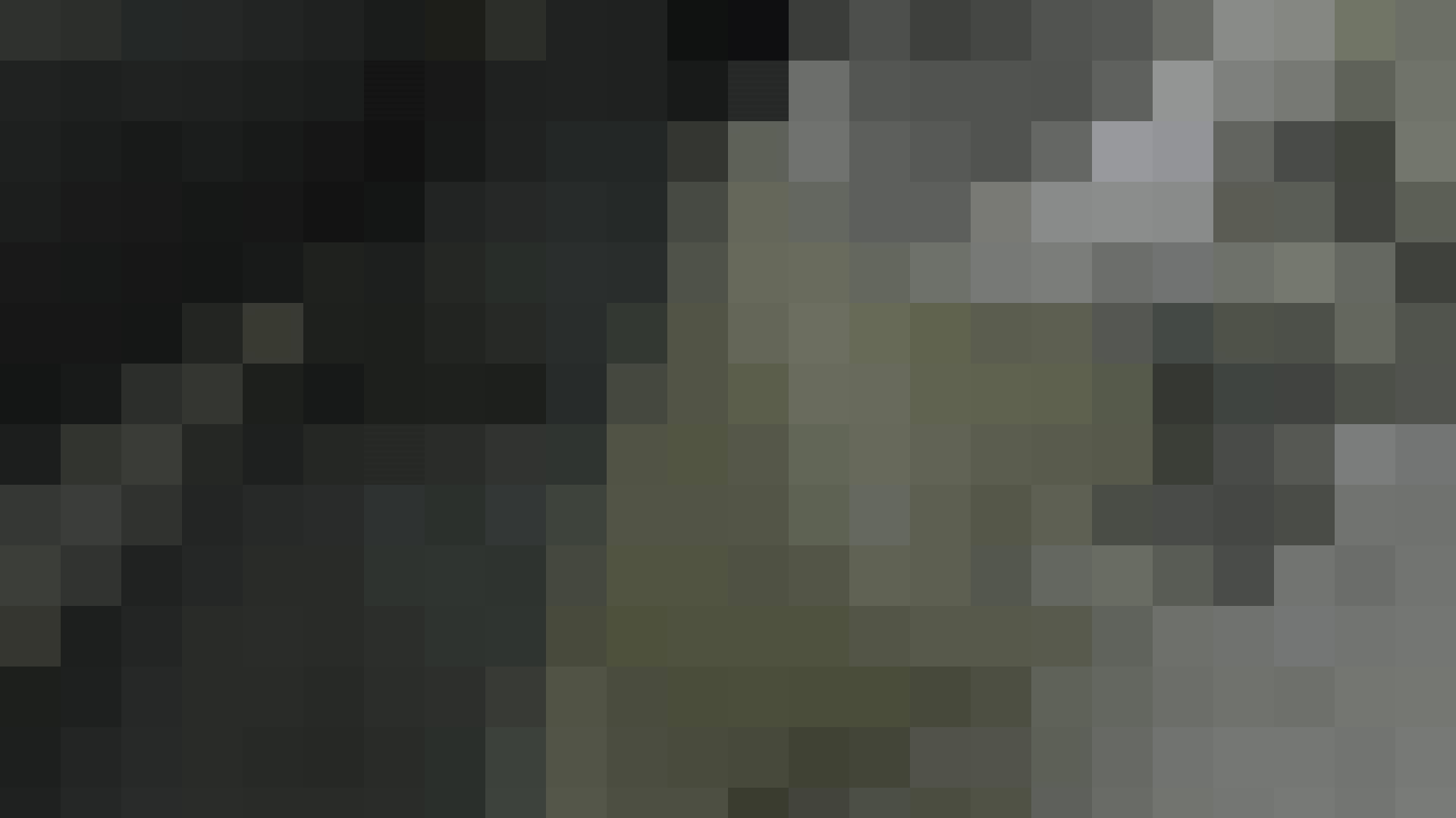 【美しき個室な世界】 vol.017 (゜∀゜) 洗面所のぞき おめこ無修正画像 108枚 11