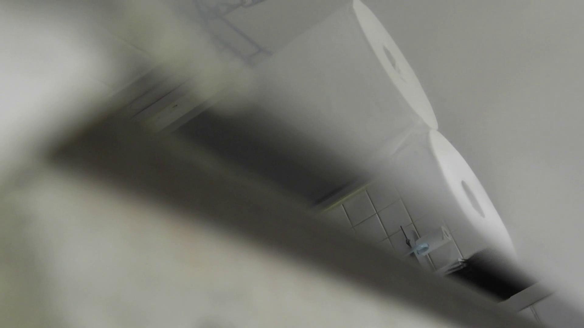 【美しき個室な世界】 vol.017 (゜∀゜) 洗面所のぞき おめこ無修正画像 108枚 17