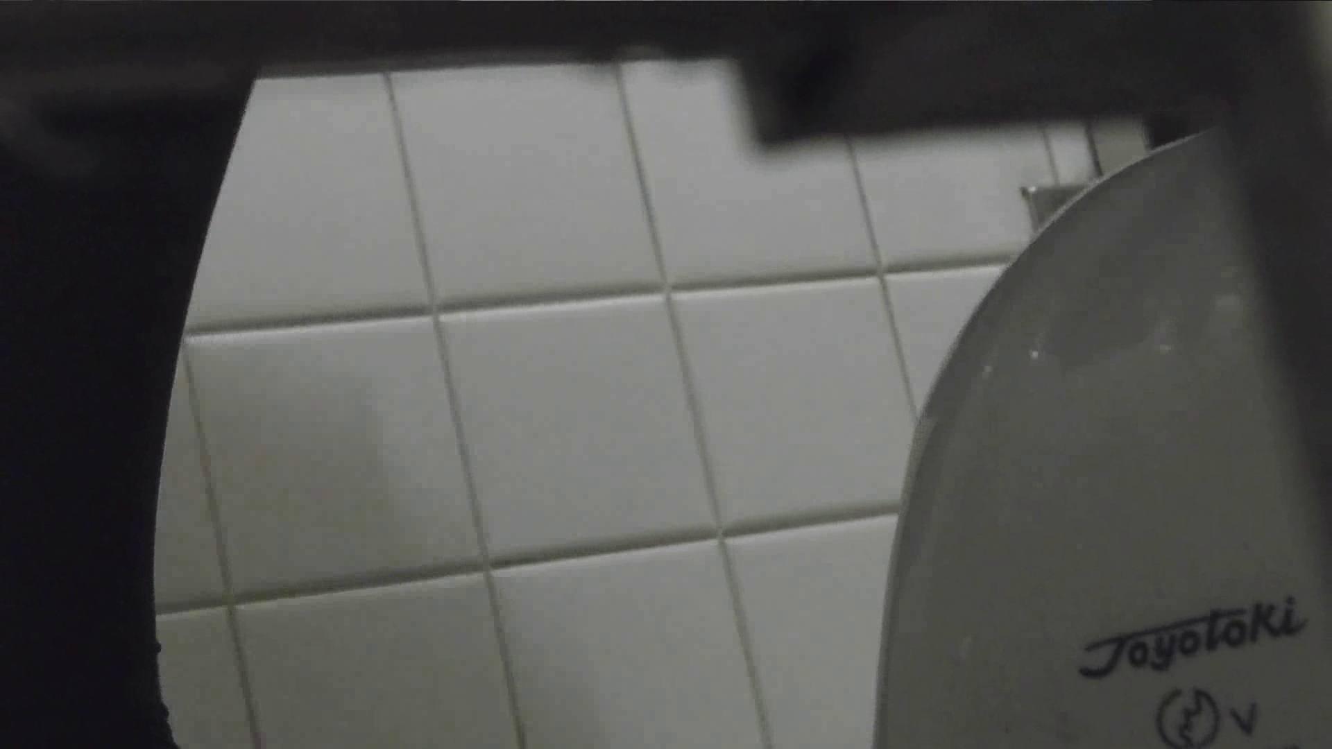 【美しき個室な世界】 vol.017 (゜∀゜) 洗面所のぞき おめこ無修正画像 108枚 89
