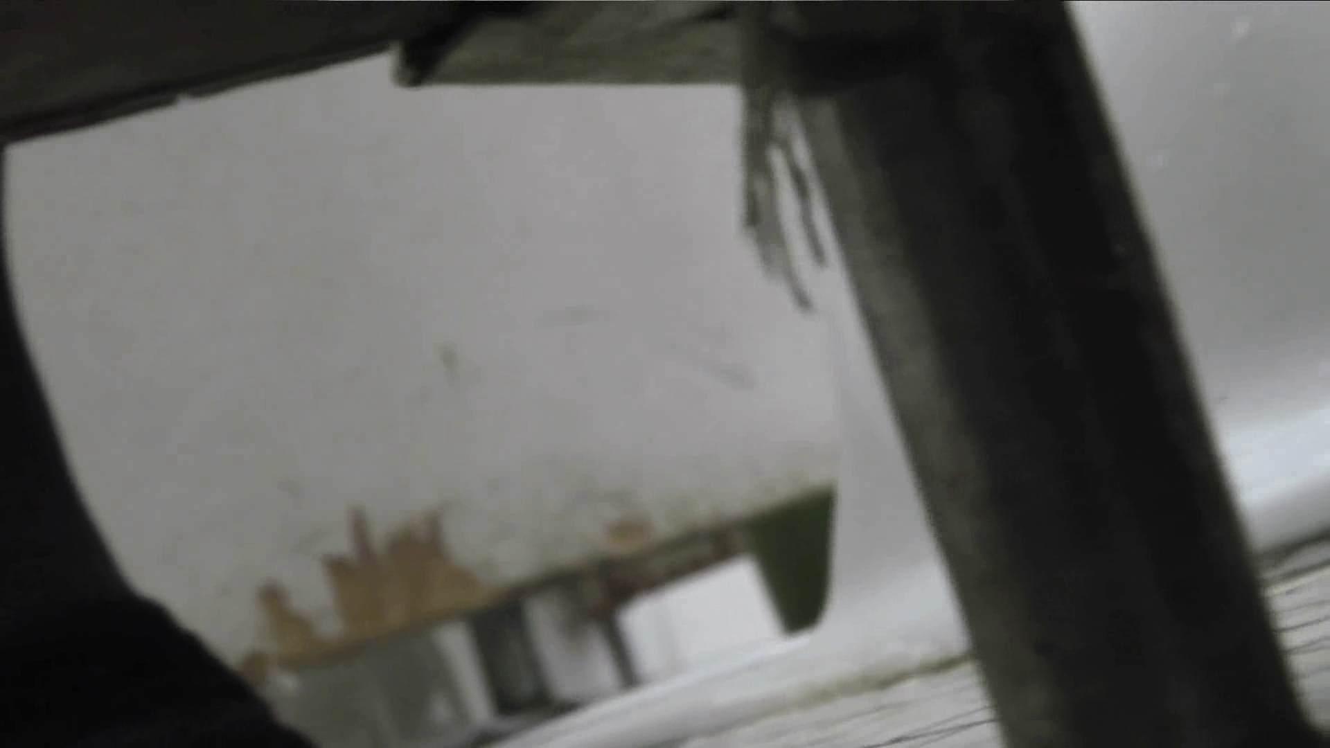 【美しき個室な世界】 vol.017 (゜∀゜) 洗面所のぞき おめこ無修正画像 108枚 104