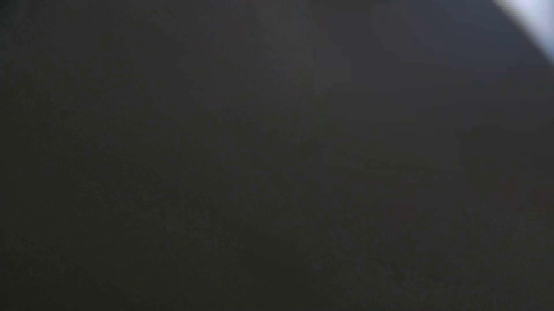 【美しき個室な世界】 vol.018 ピンクのおネエタン 洗面所のぞき  81枚 10