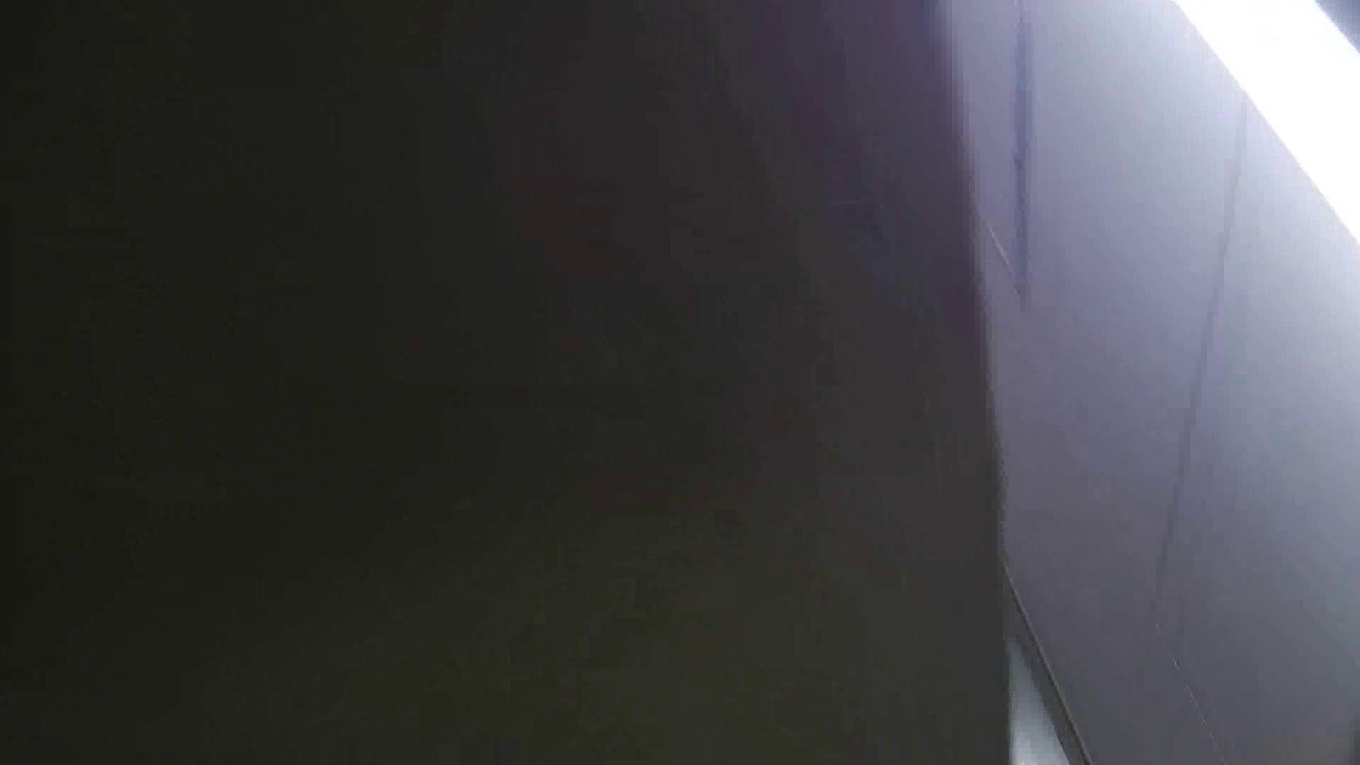 【美しき個室な世界】 vol.018 ピンクのおネエタン 洗面所のぞき  81枚 40
