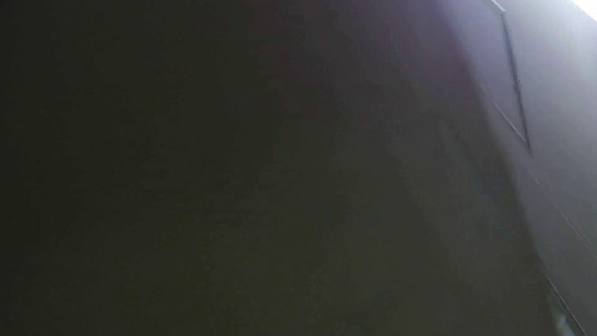 【美しき個室な世界】 vol.018 ピンクのおネエタン 洗面所のぞき  81枚 64