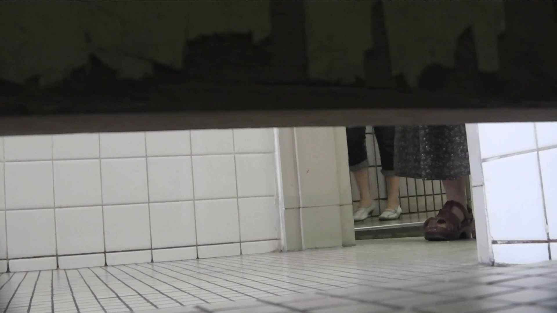 【美しき個室な世界】 vol.018 ピンクのおネエタン 洗面所のぞき | 0  81枚 79