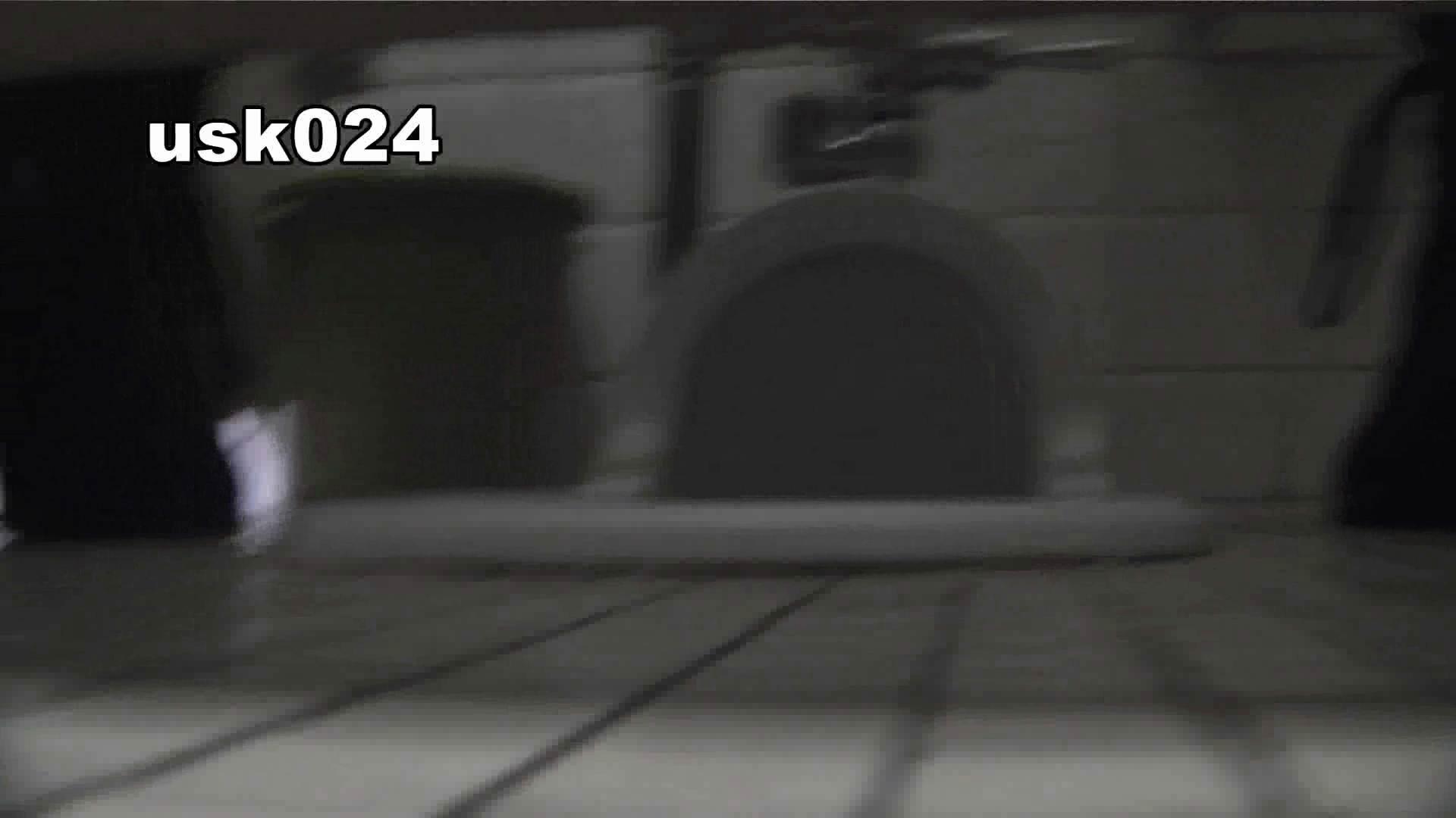 洗面所特攻隊 vol.024 (*´Д`)ハァハァ 盛合せ セックス無修正動画無料 85枚 28