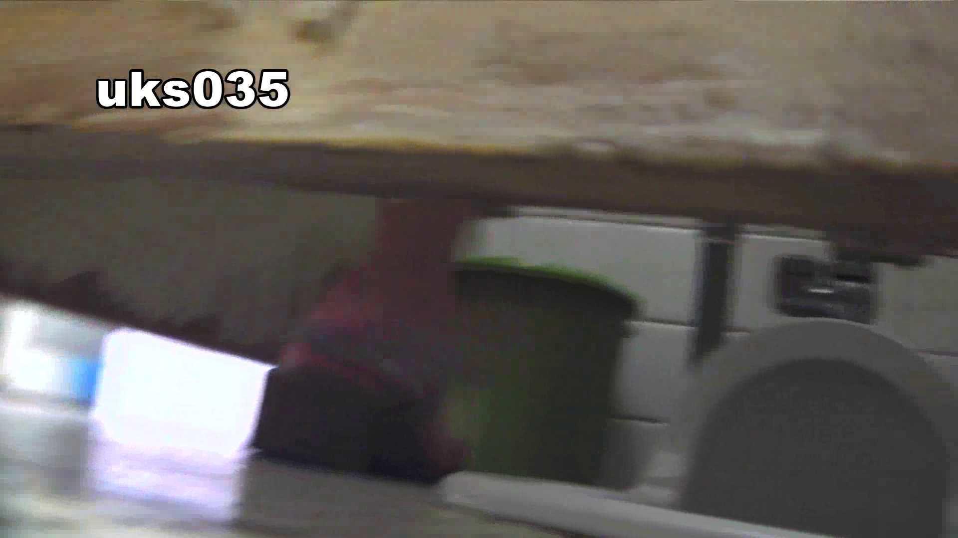 洗面所特攻隊 vol.035 美脚にょろ 洗面所のぞき 性交動画流出 89枚 14
