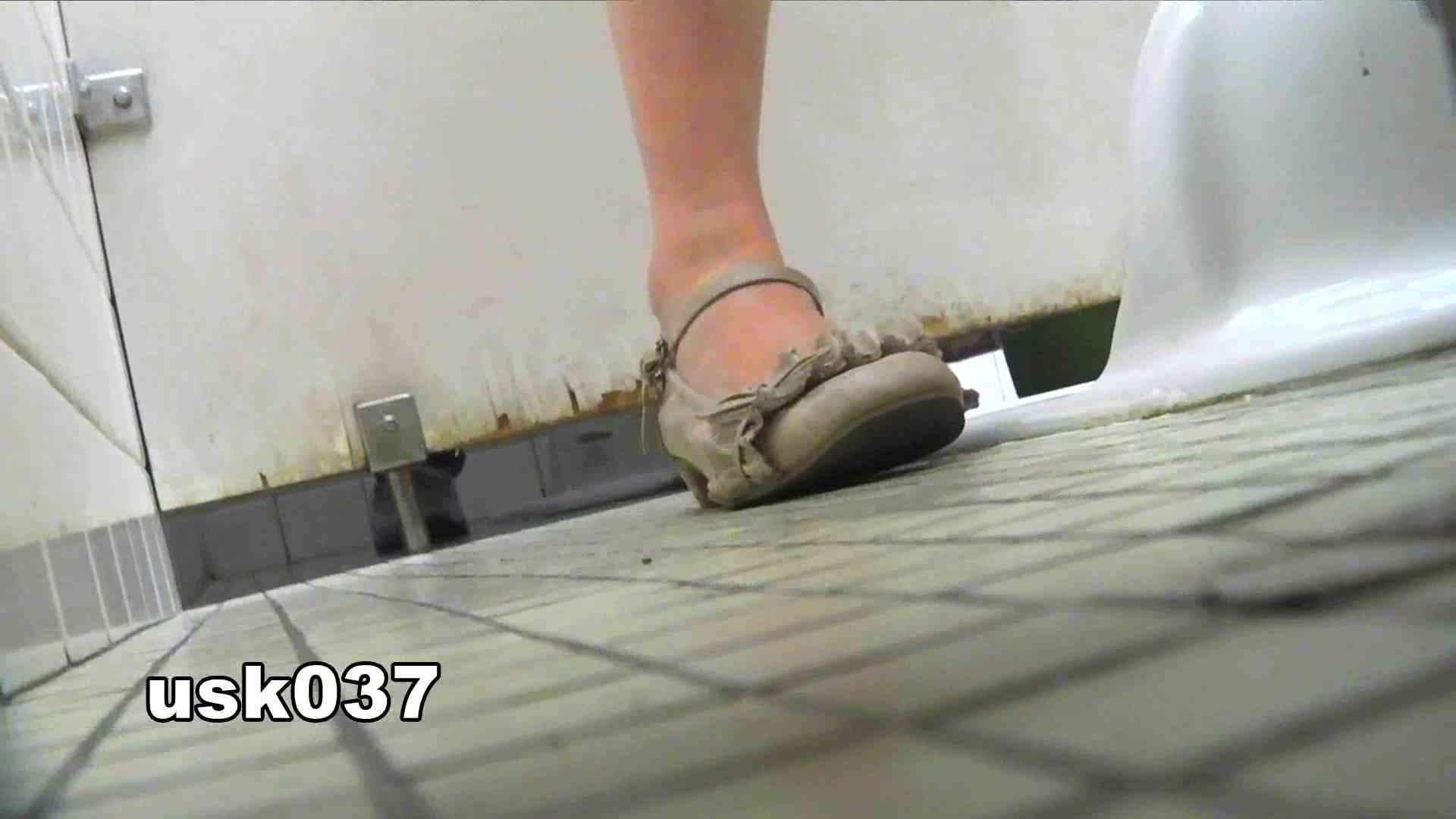 【美しき個室な世界】 vol.037 ひねり出す様子(フトイです) 洗面所のぞき おめこ無修正画像 99枚 29