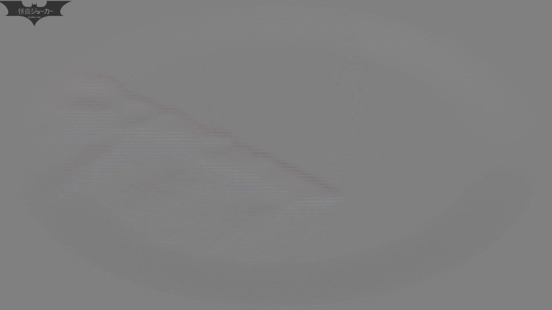 【美しき個室な世界】洗面所特攻隊 vol.046 更に進化【2015・07位】 高評価  96枚 84