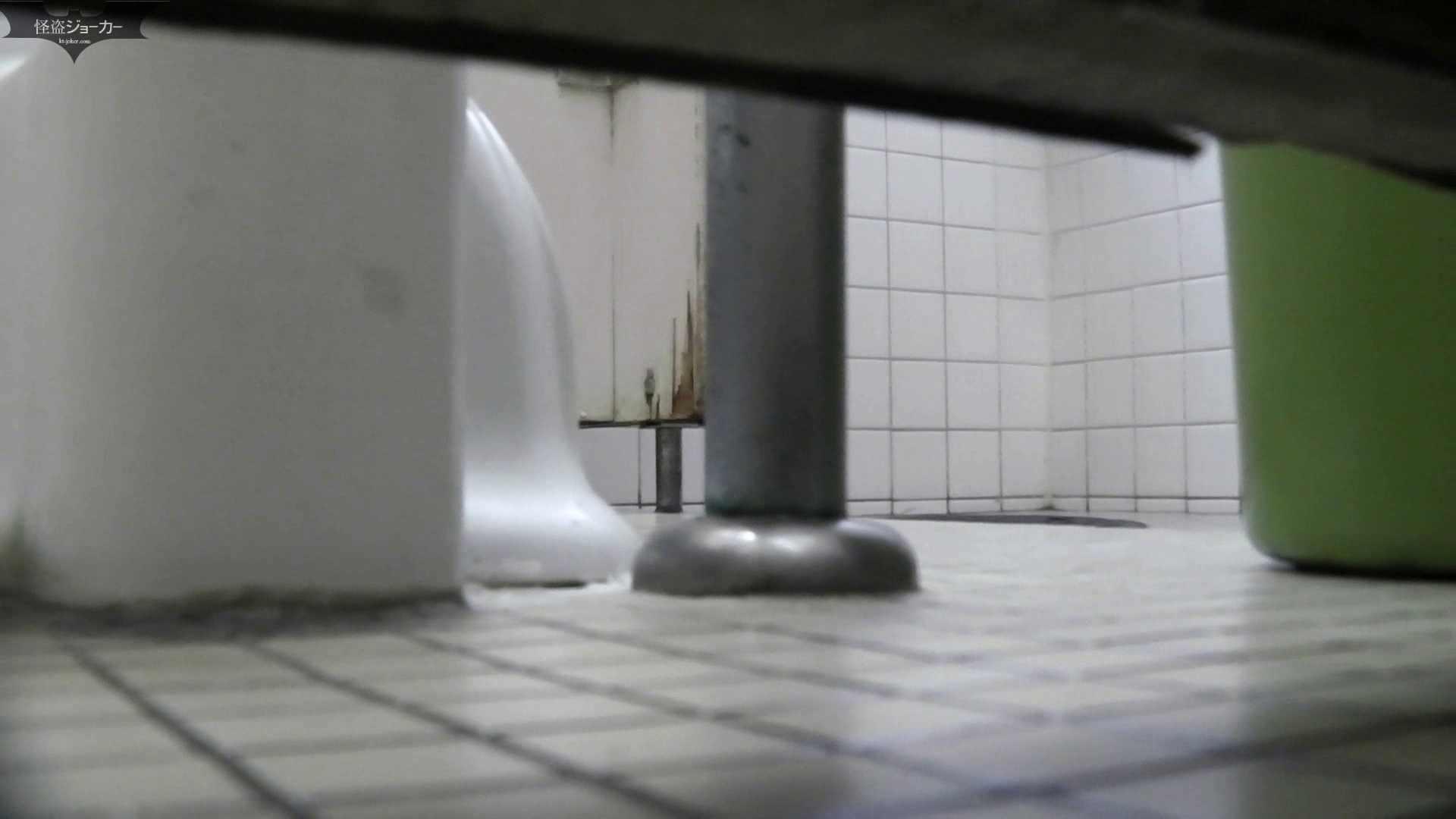【美しき個室な世界】洗面所特攻隊 vol.051 お姉さんのSEX ぱこり動画紹介 100枚 18