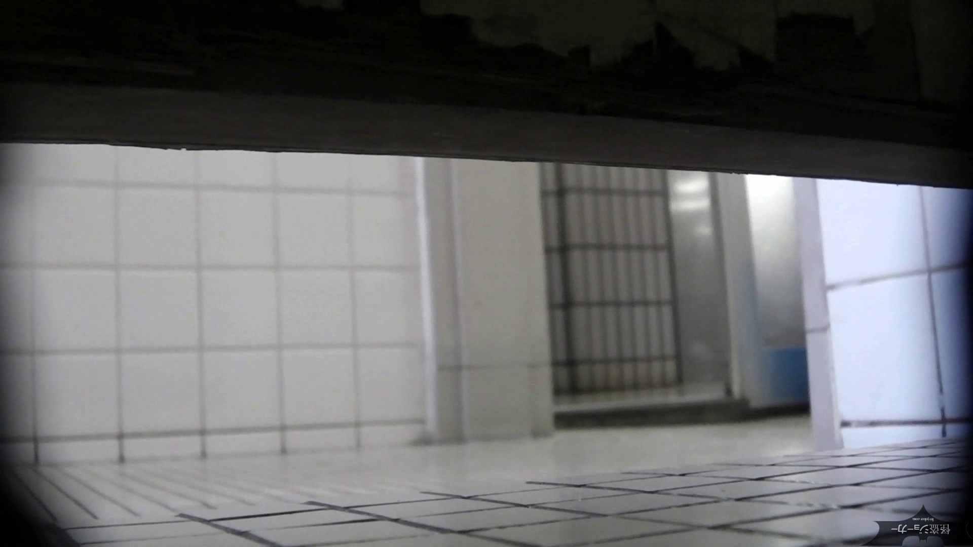 【美しき個室な世界】洗面所特攻隊 vol.051 高画質 | 盛合せ  100枚 43